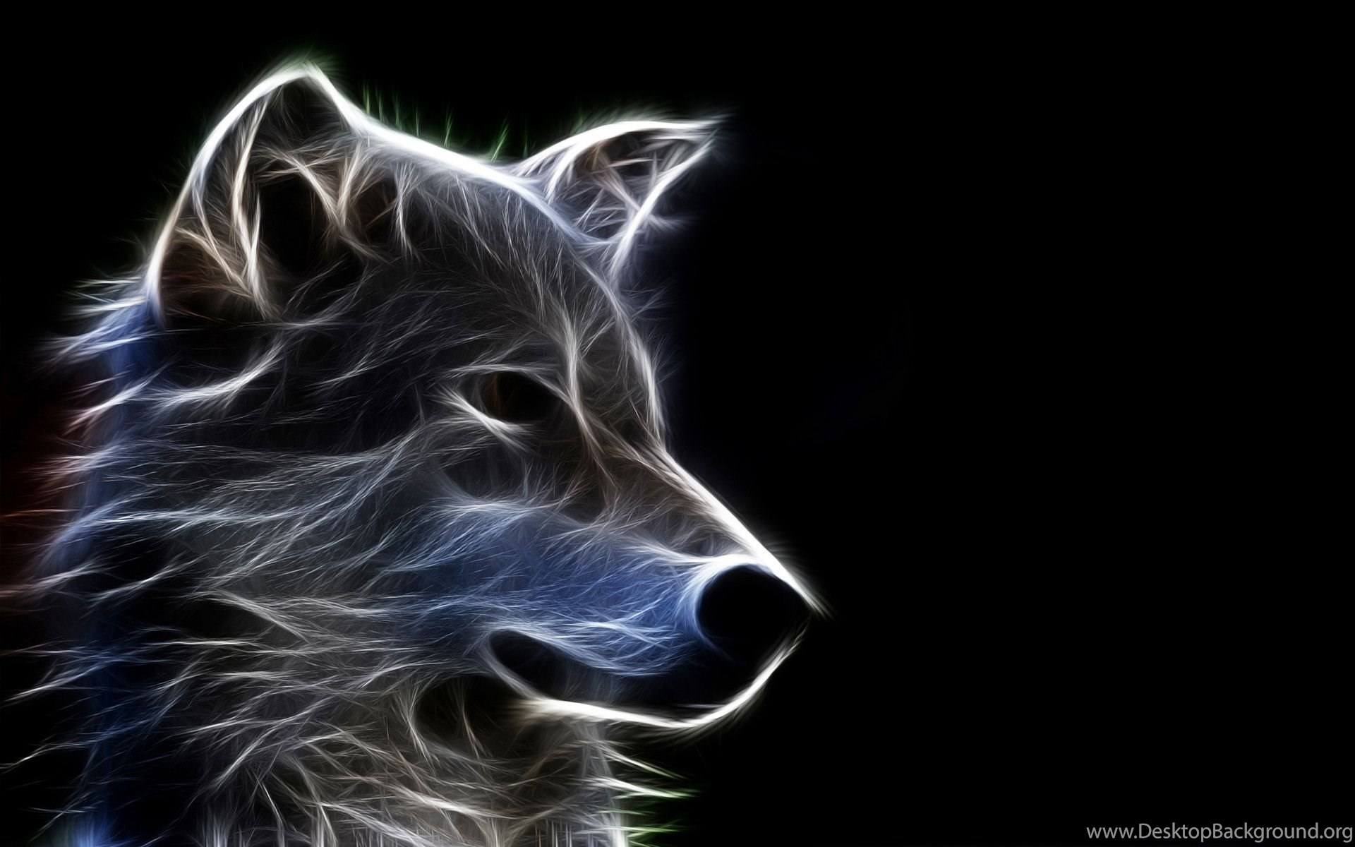 Wolf Wallpapers HD A35 Desktop Background