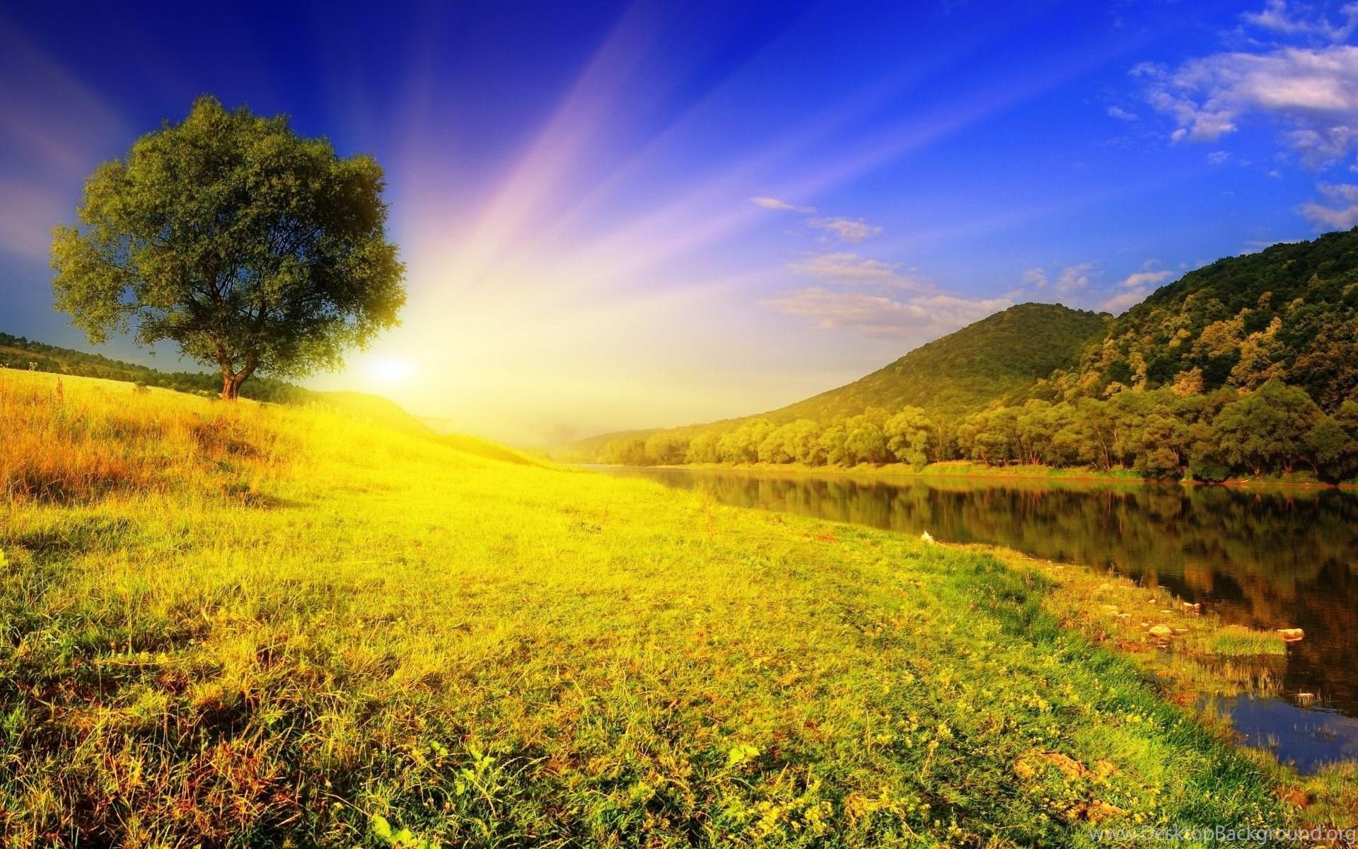 природа рассвет деревья  № 1158259  скачать