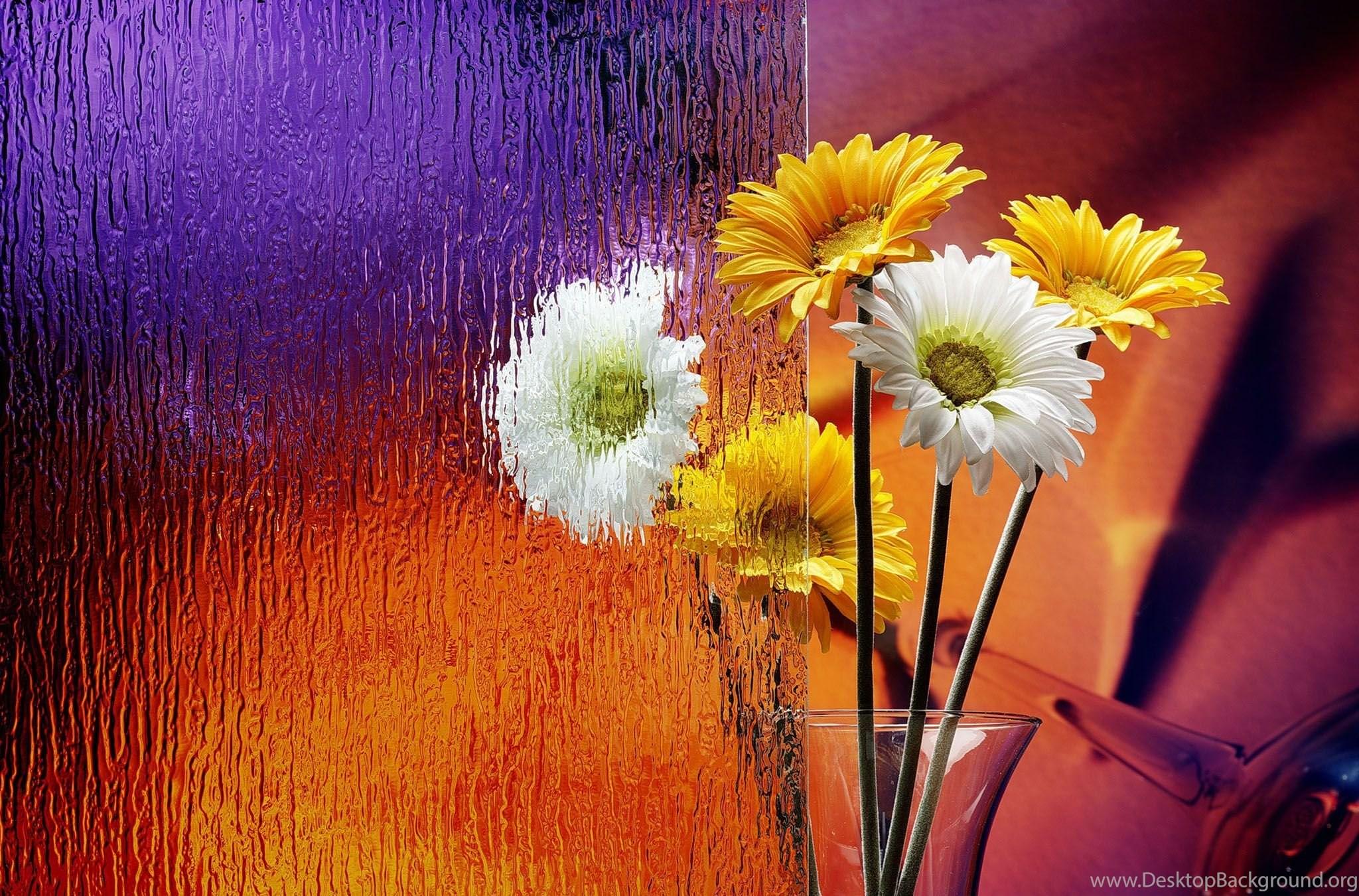 flowers wallpapers free download pc desktop background