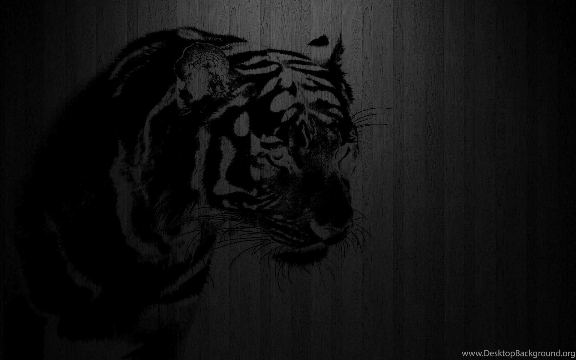 Black Tiger Wallpapers Full Hd Wallpapers Search Desktop Background
