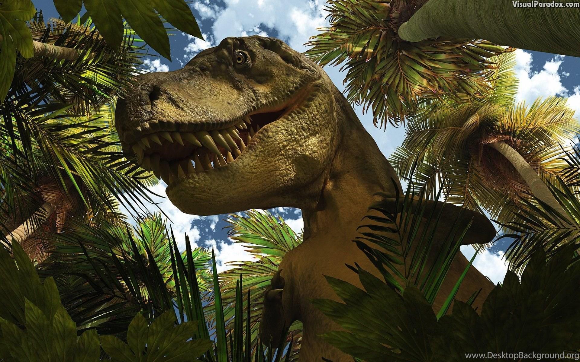 dinosaur hd wallpapers desktop background