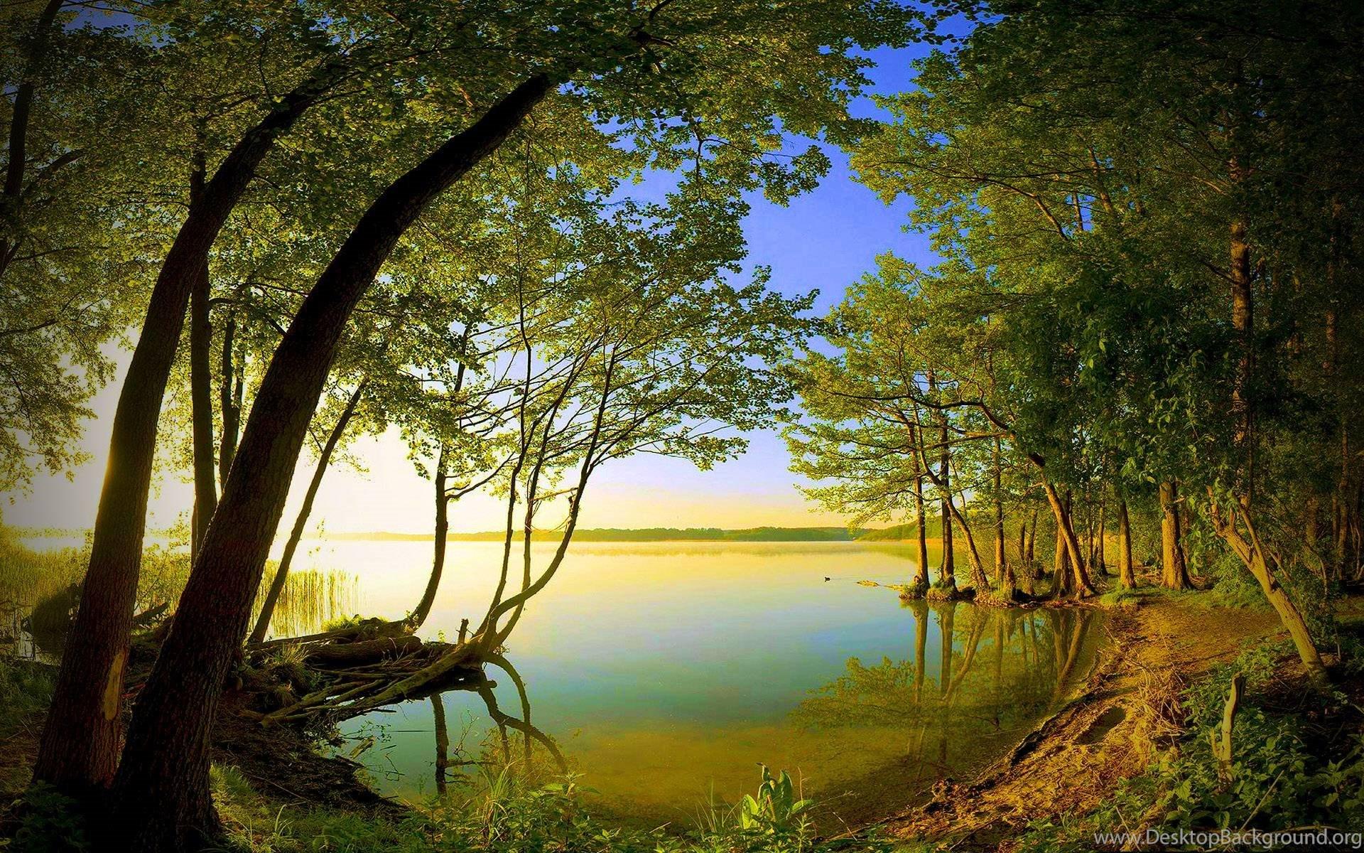 3d Nature Wallpapers Hd Desktop Desktop Background