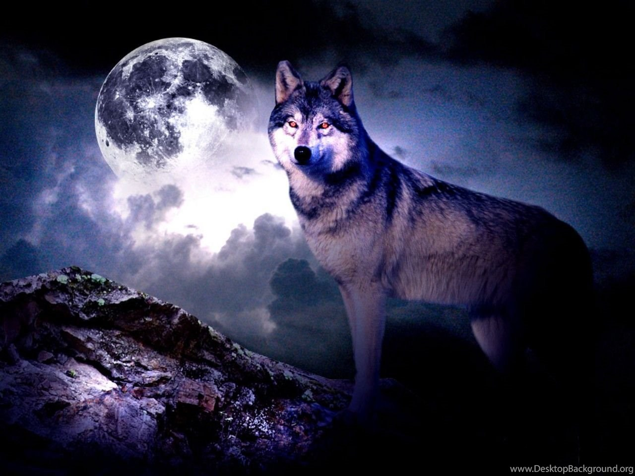 251397 57 wolf howling at the moon wallpapers wolf moon wallpapers 11056
