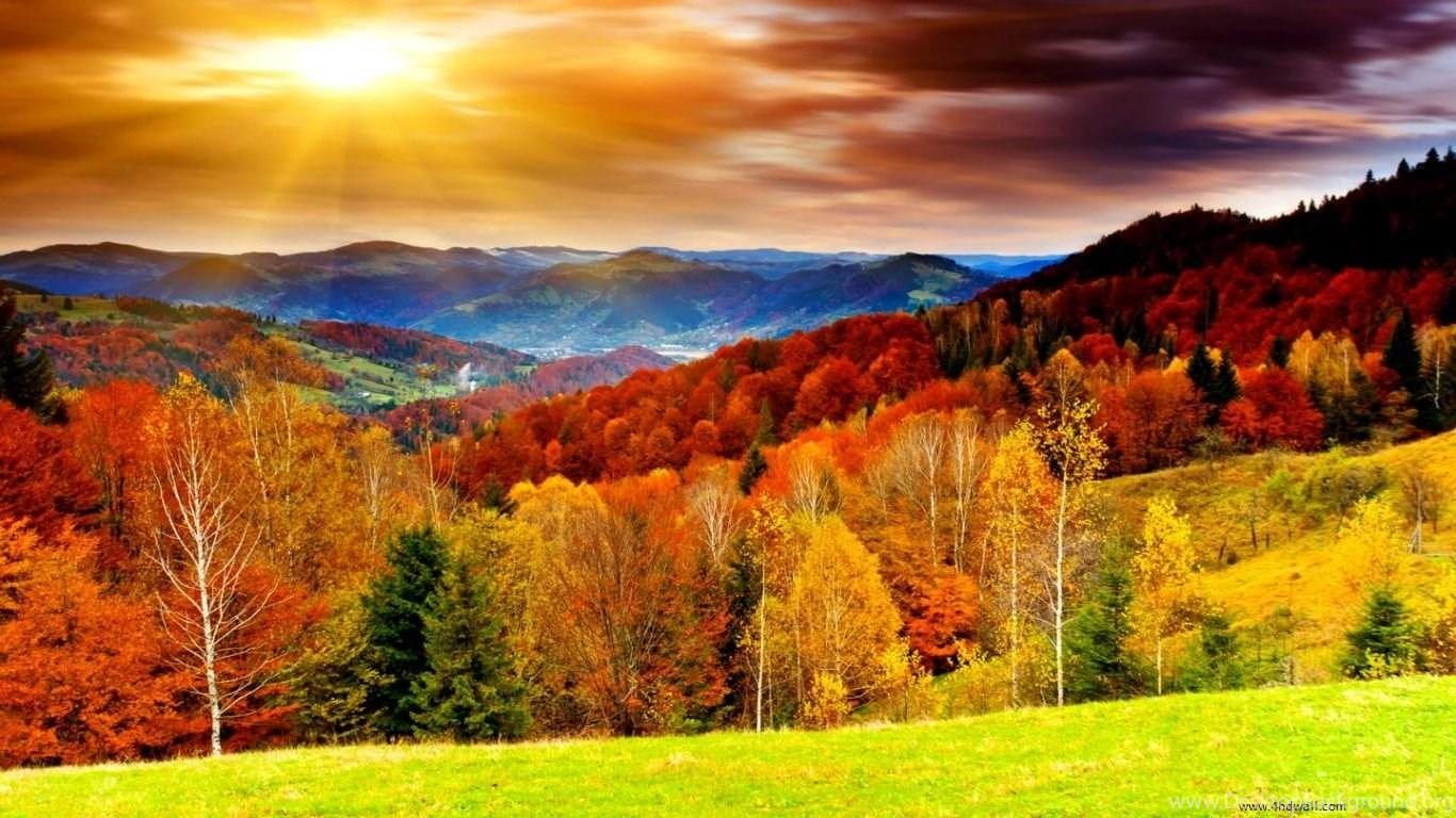 fall season wallpapers full hd desktop background