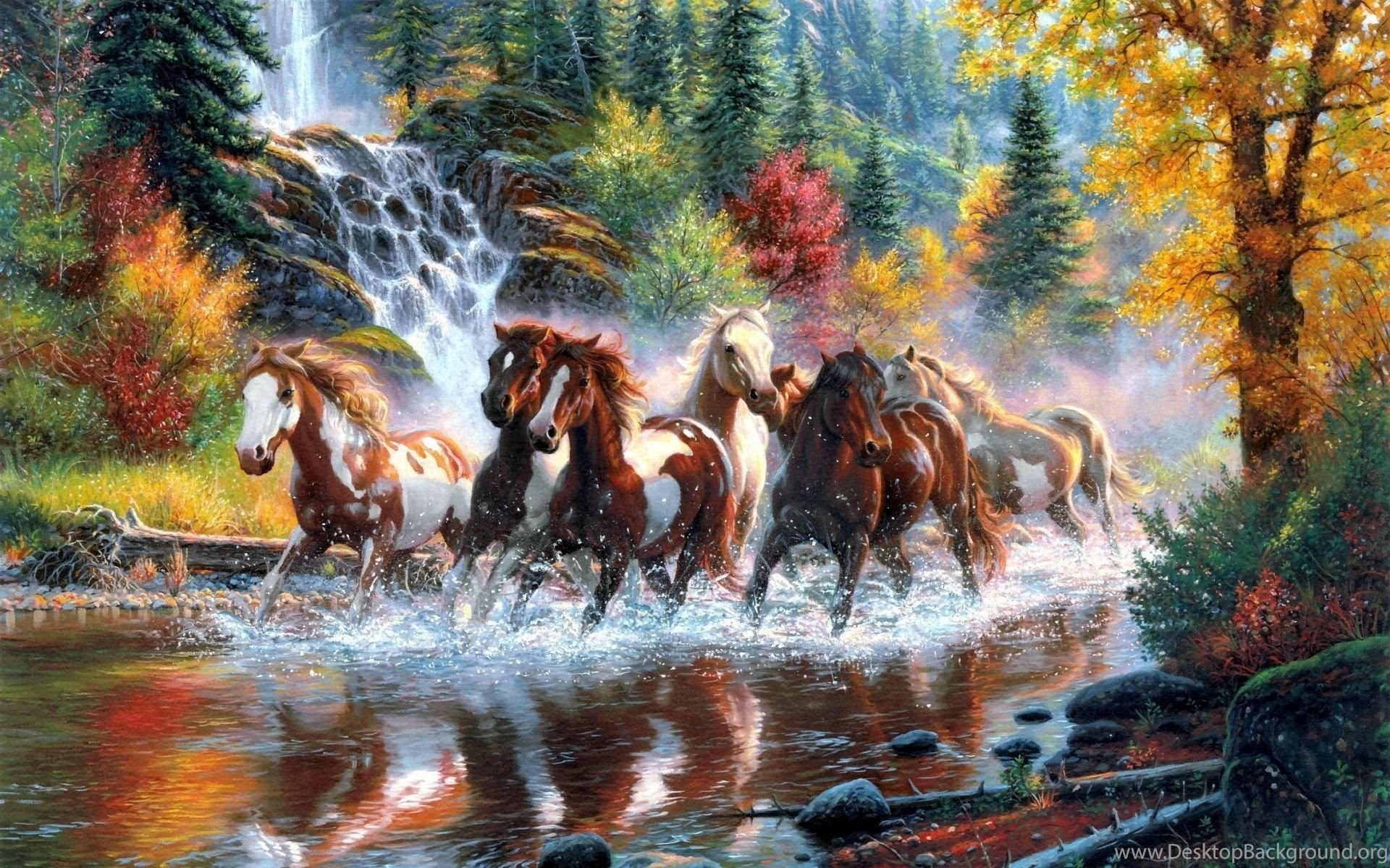 Horses Running In The River Artistic Hd Wallpapers 1920 1200 17937