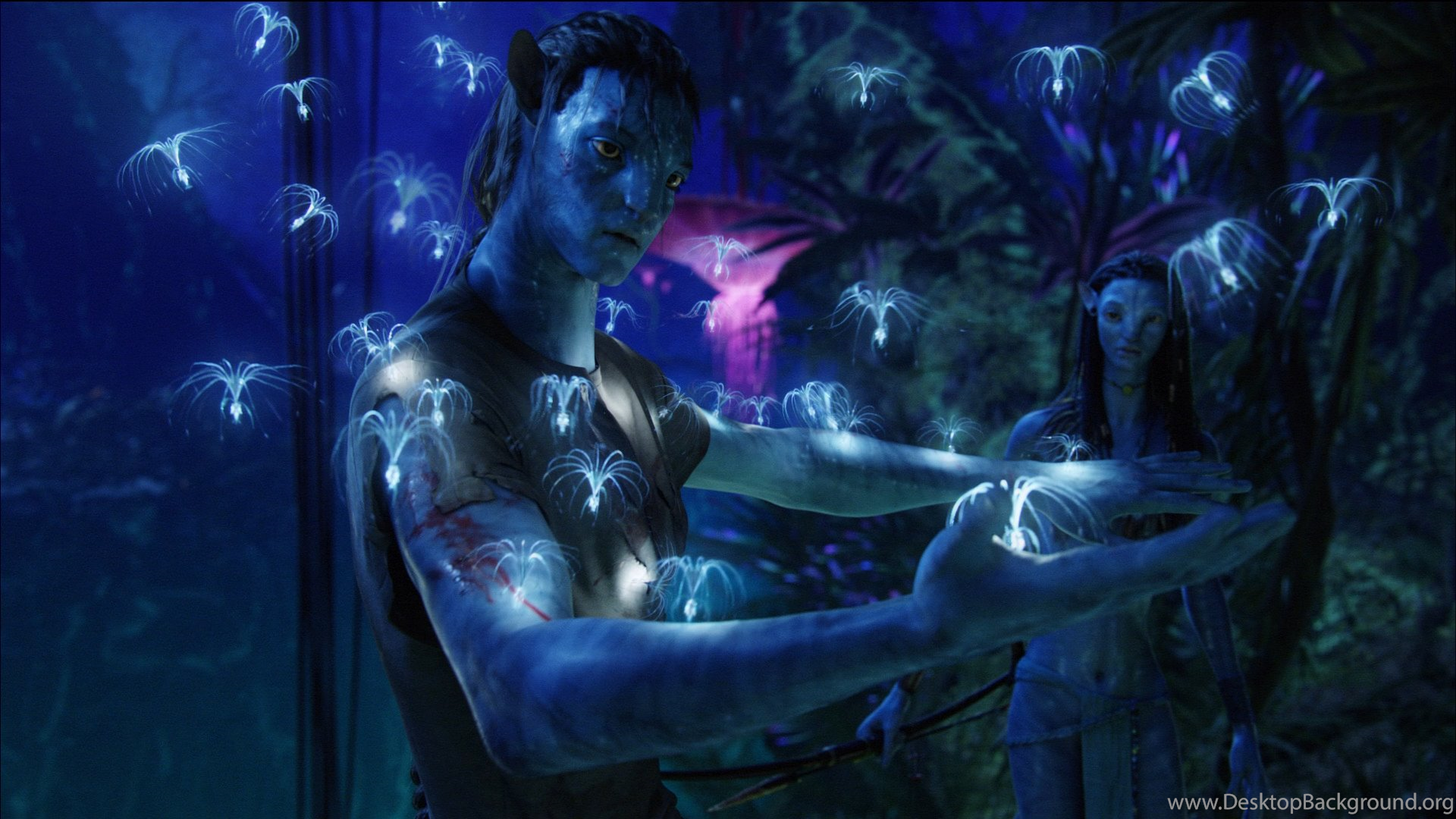 original avatar hd wallpapers for all avatar wallpapers fans