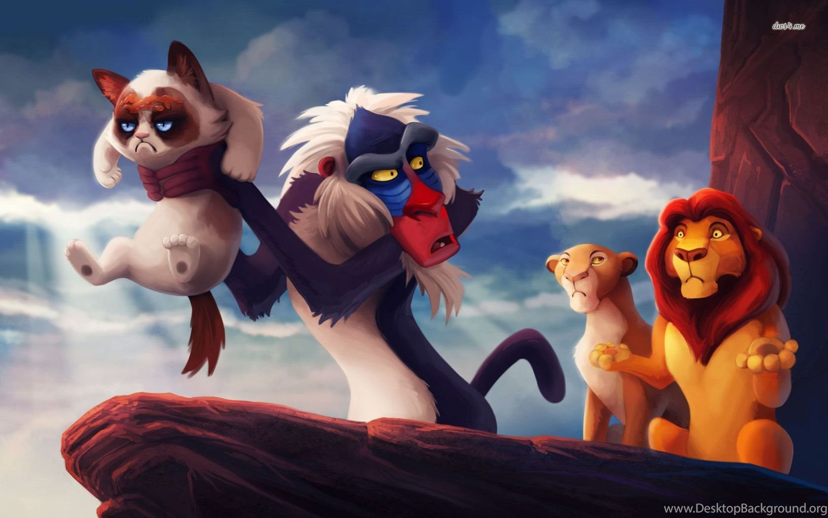 grumpy cat in the lion king wallpapers meme wallpapers desktop