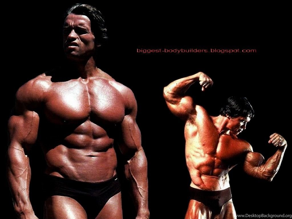 biggest body builders: arnold schwarzenegger wallpapers hd desktop