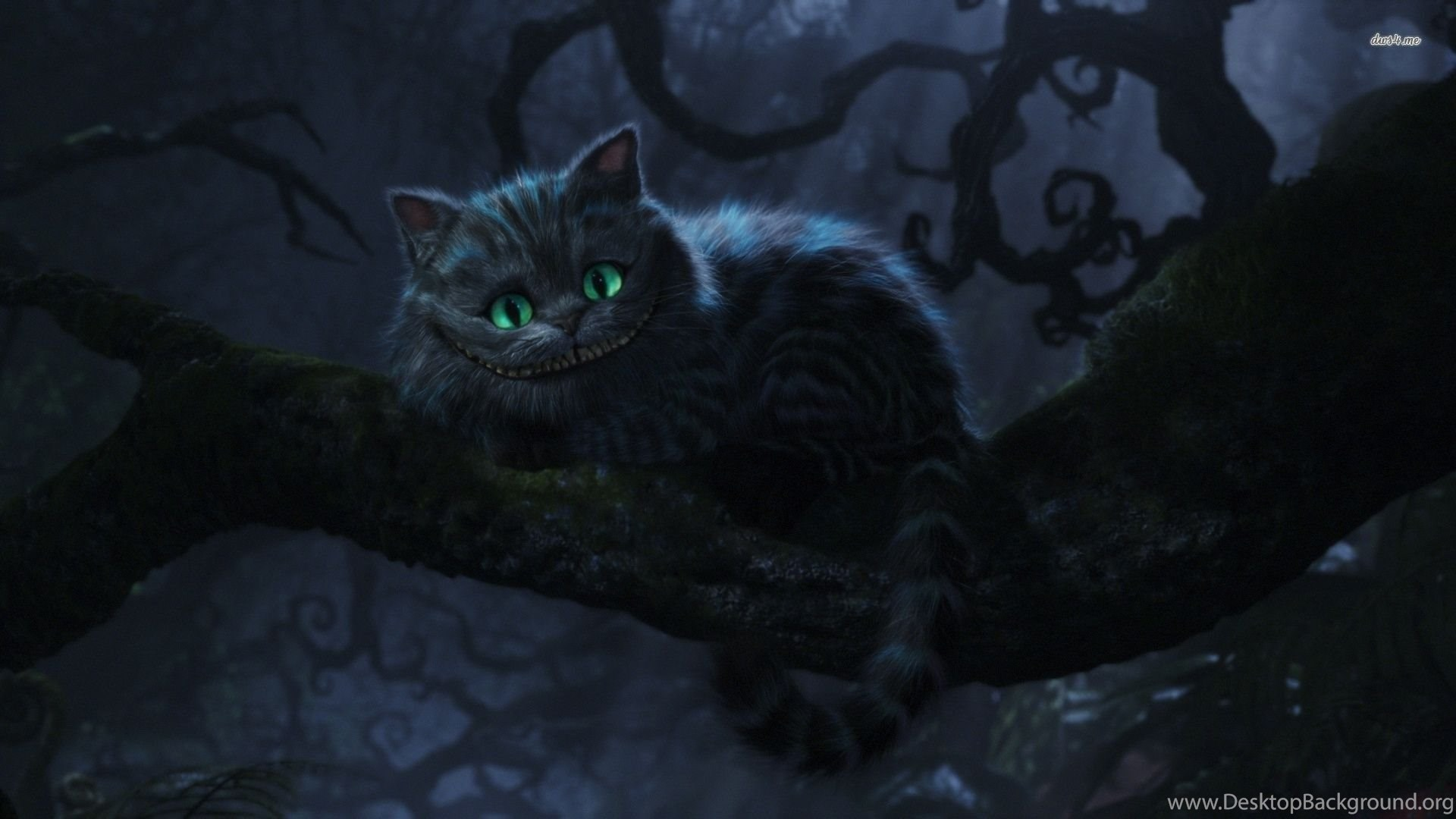 Cheshire Cat Alice In Wonderland Wallpapers Cartoon Wallpapers