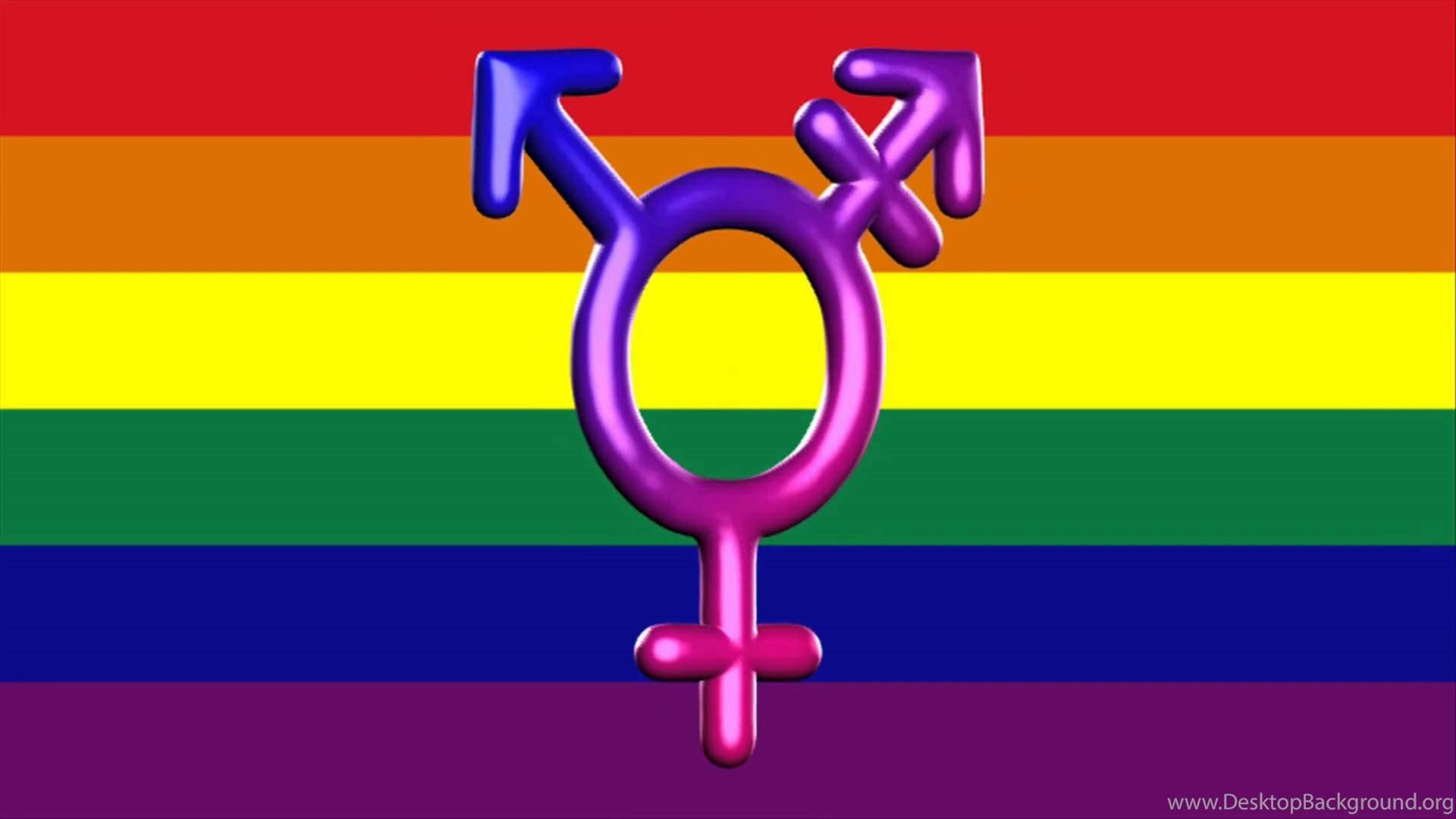 6. gay-pride-wallpapers-HD6-600x338