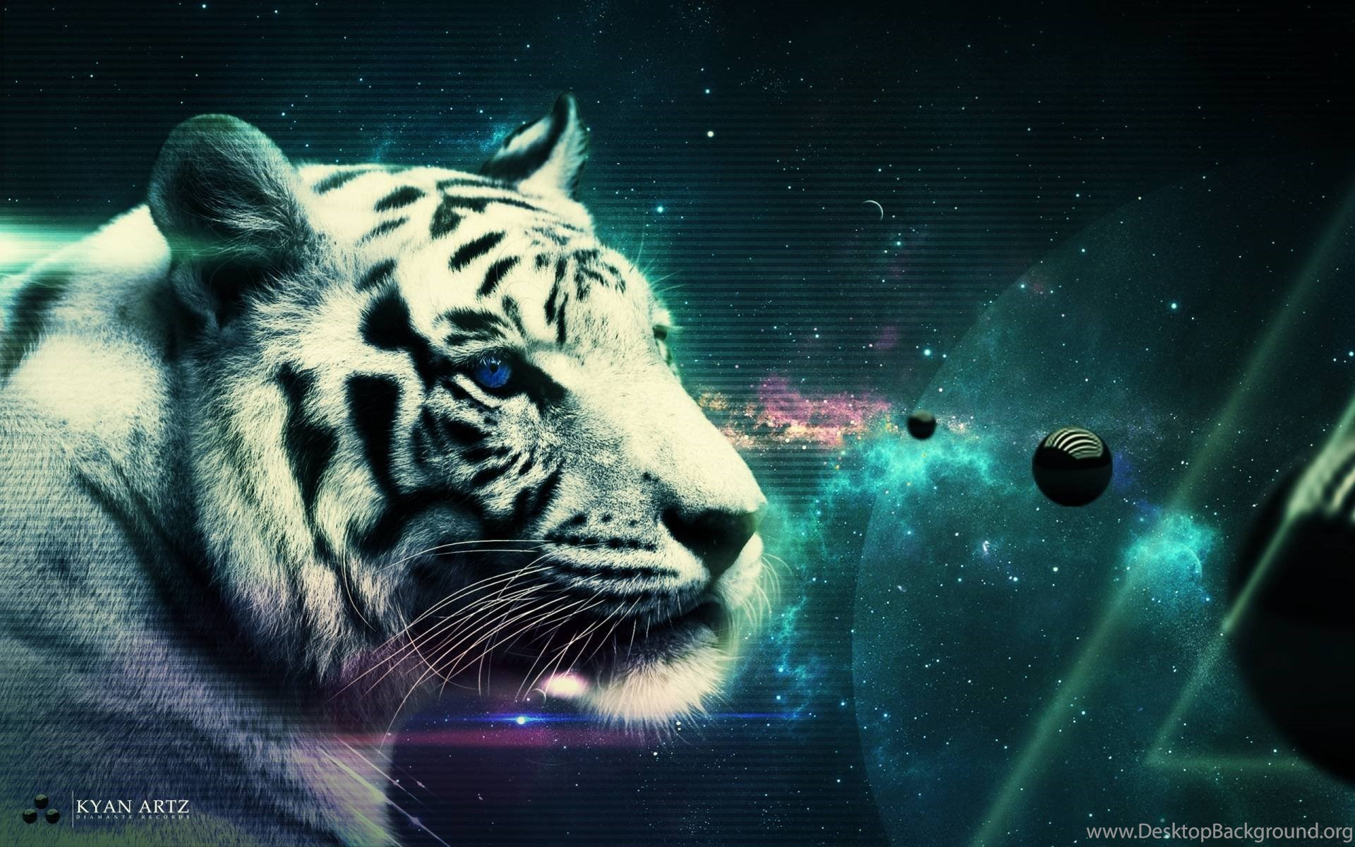 White Tiger Wallpapers HD Cave Desktop Background