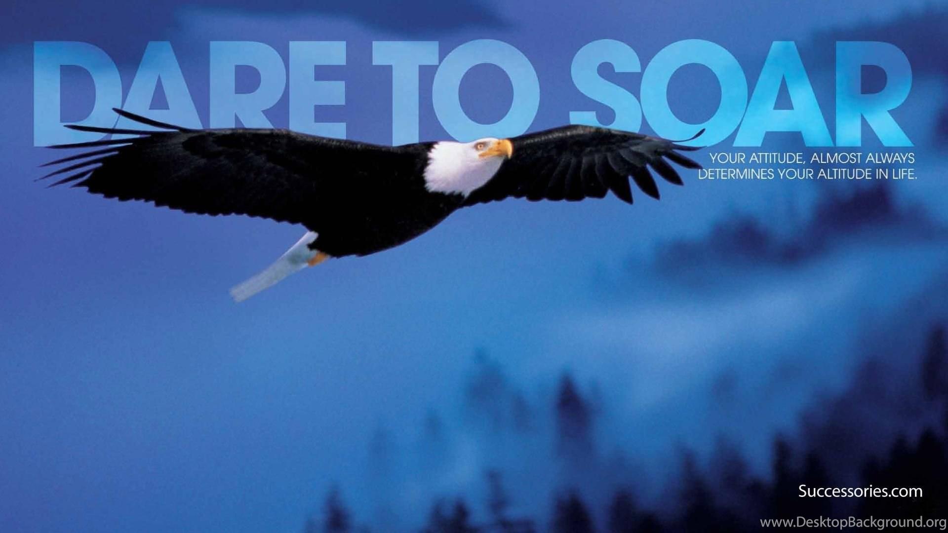 dare to soar wallpaper ( desktop background
