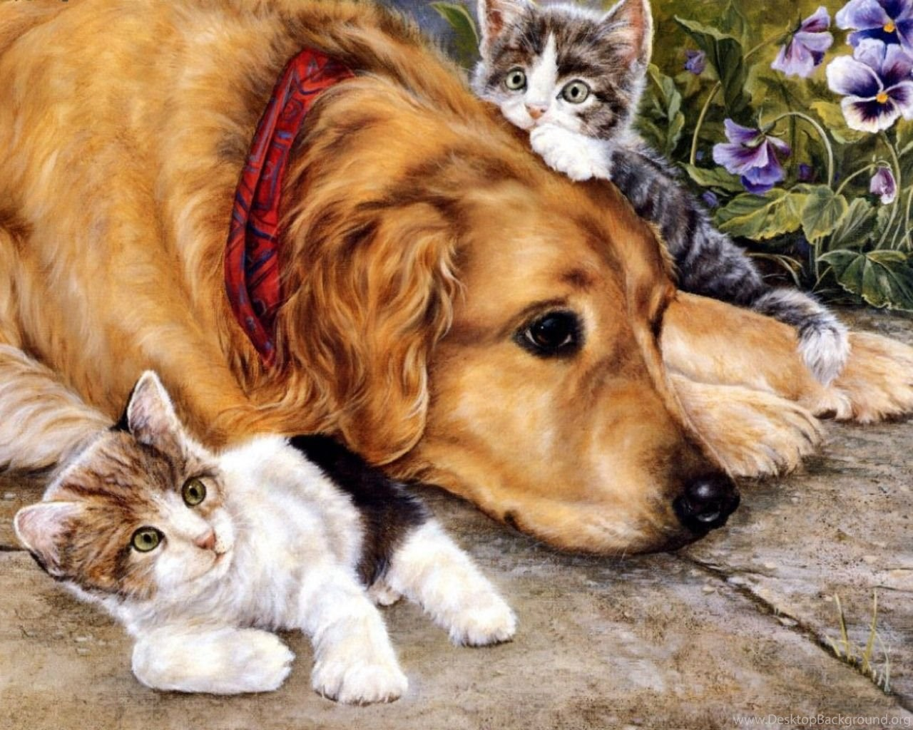 Cats Cats Dog Animals Cat Painting Pet Free Download Wallpapers Desktop Background