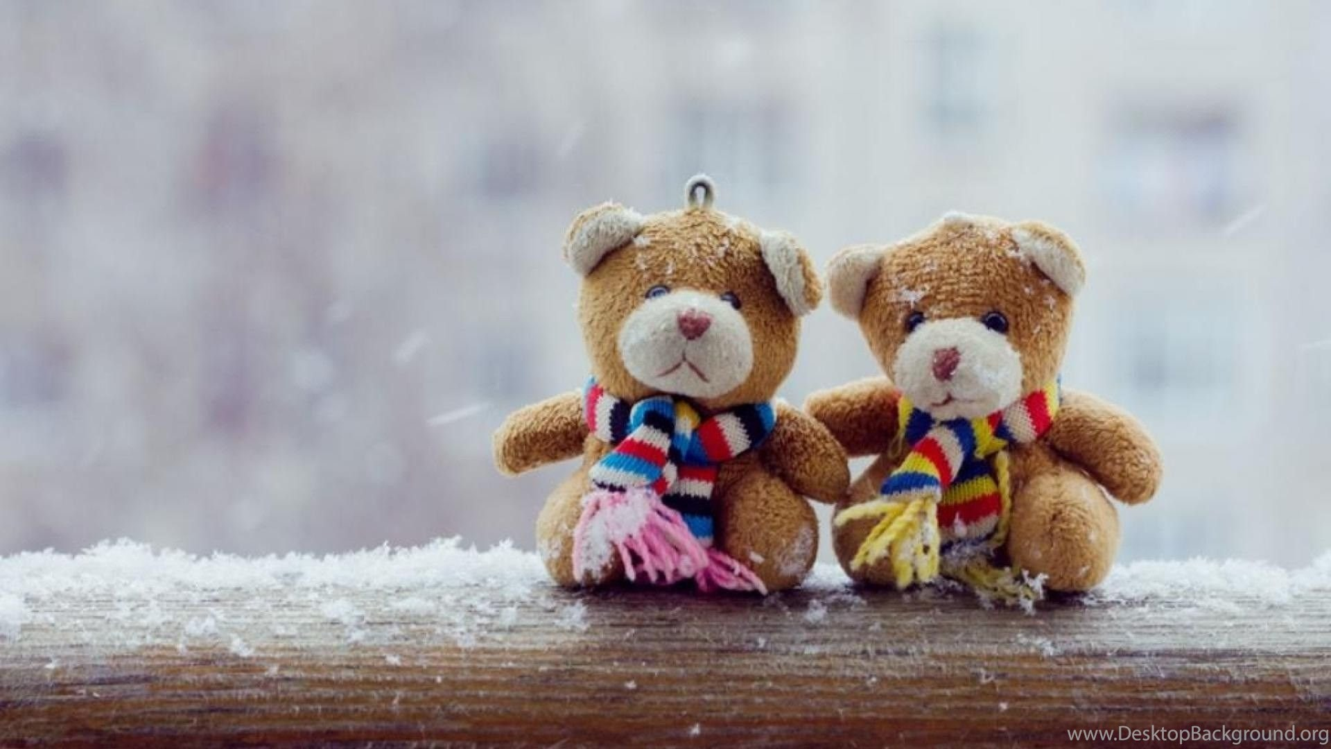 i love you teddy bear hd wallpapers desktop background
