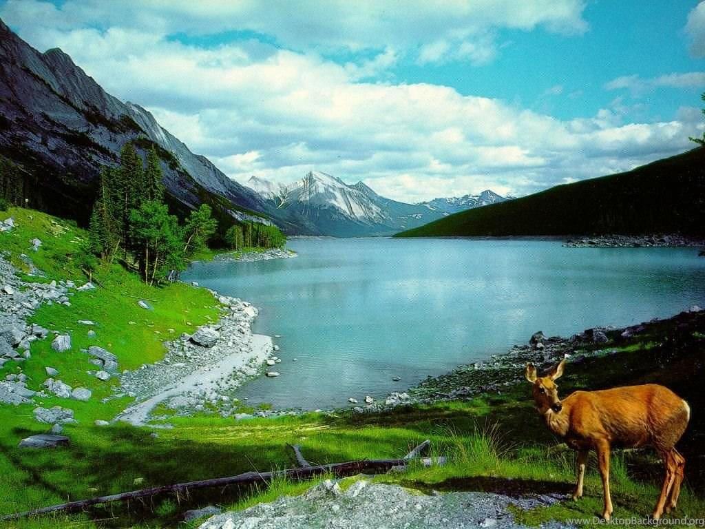 Keindahan Alam Beauty Nature S Desktop Background