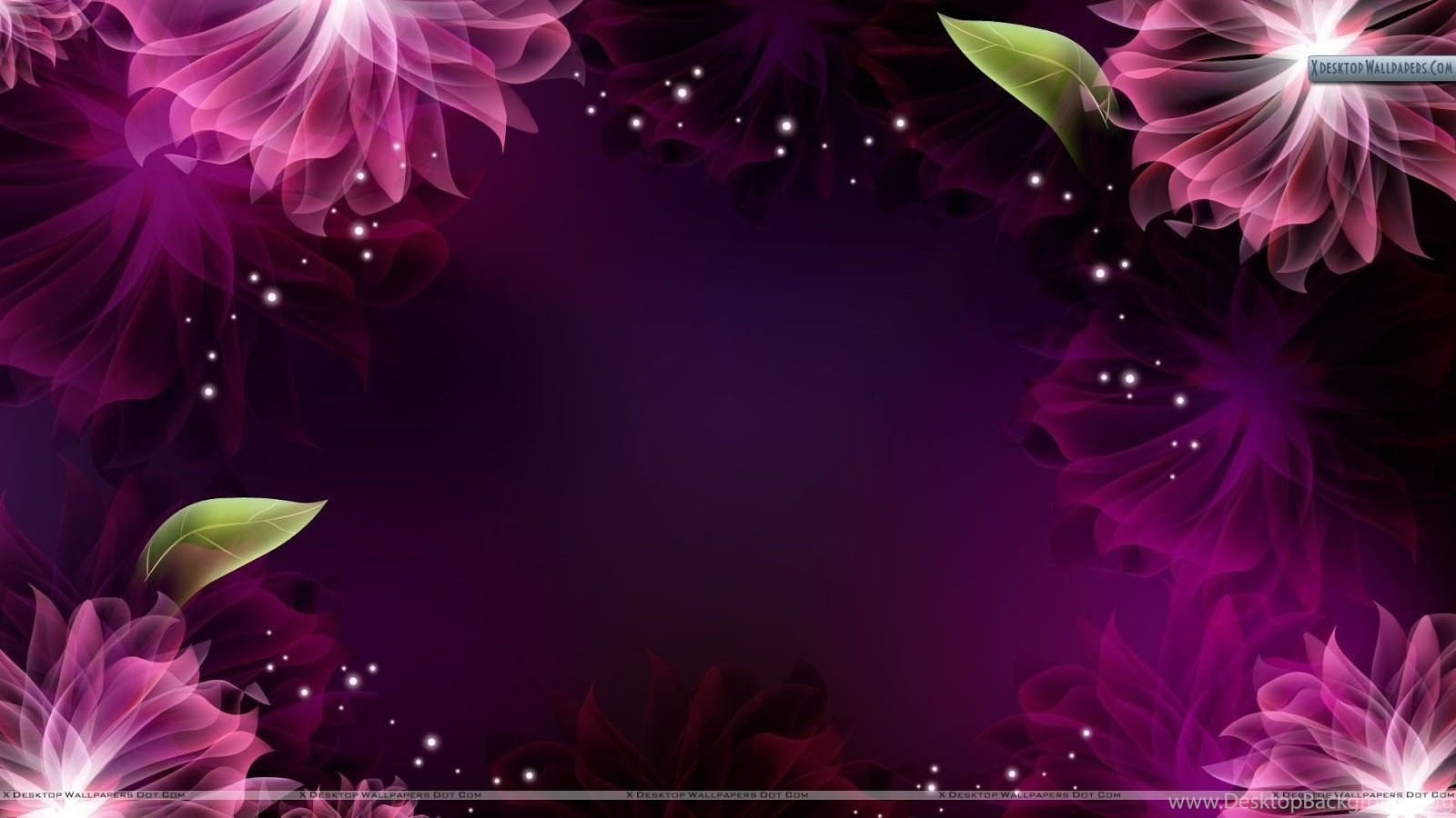 beautiful flower backgrounds wallpapers