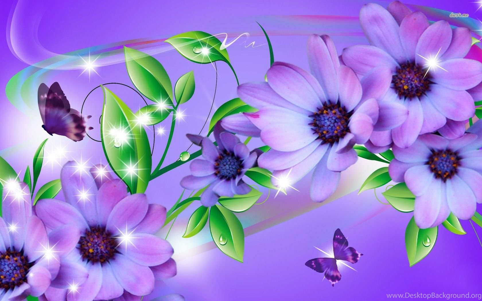 butterfly on purple flowers wallpapers digital art