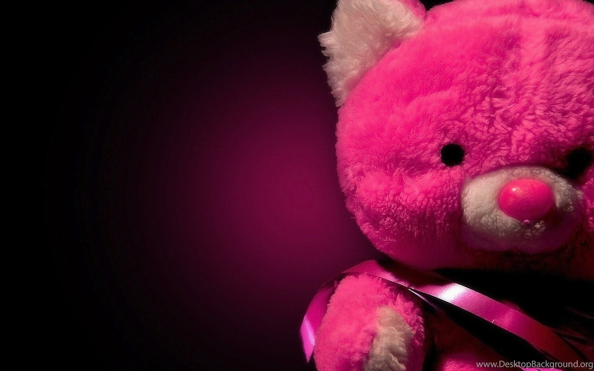 20 full size cute teddy bears hd wallpapers desktop background widescreen voltagebd Gallery