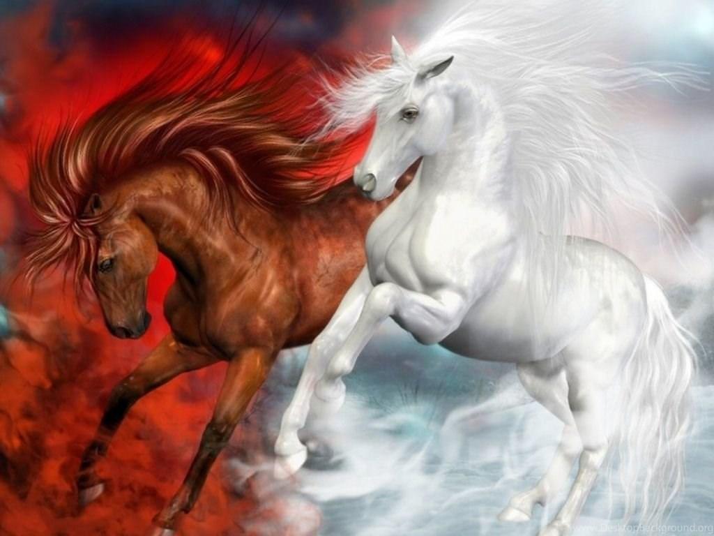 Download Beautiful Horses Wallpapers 1024x768 Desktop Background
