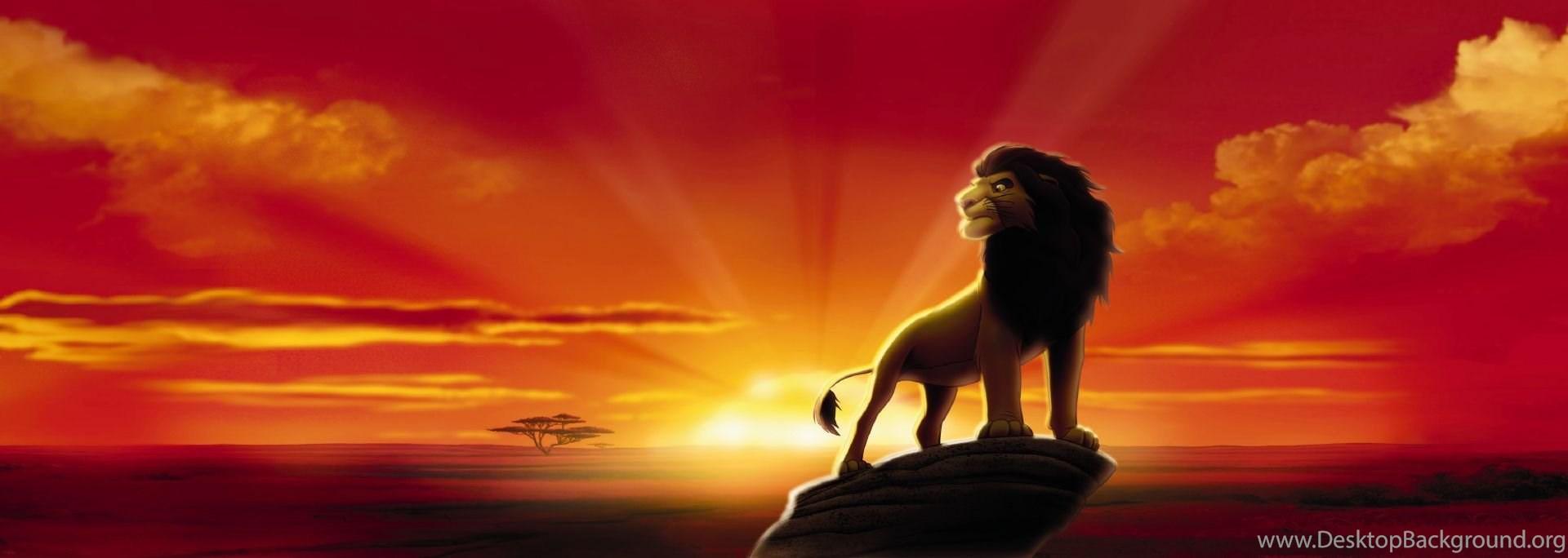 Images Lion King Wallpapers Hd Base Desktop Background