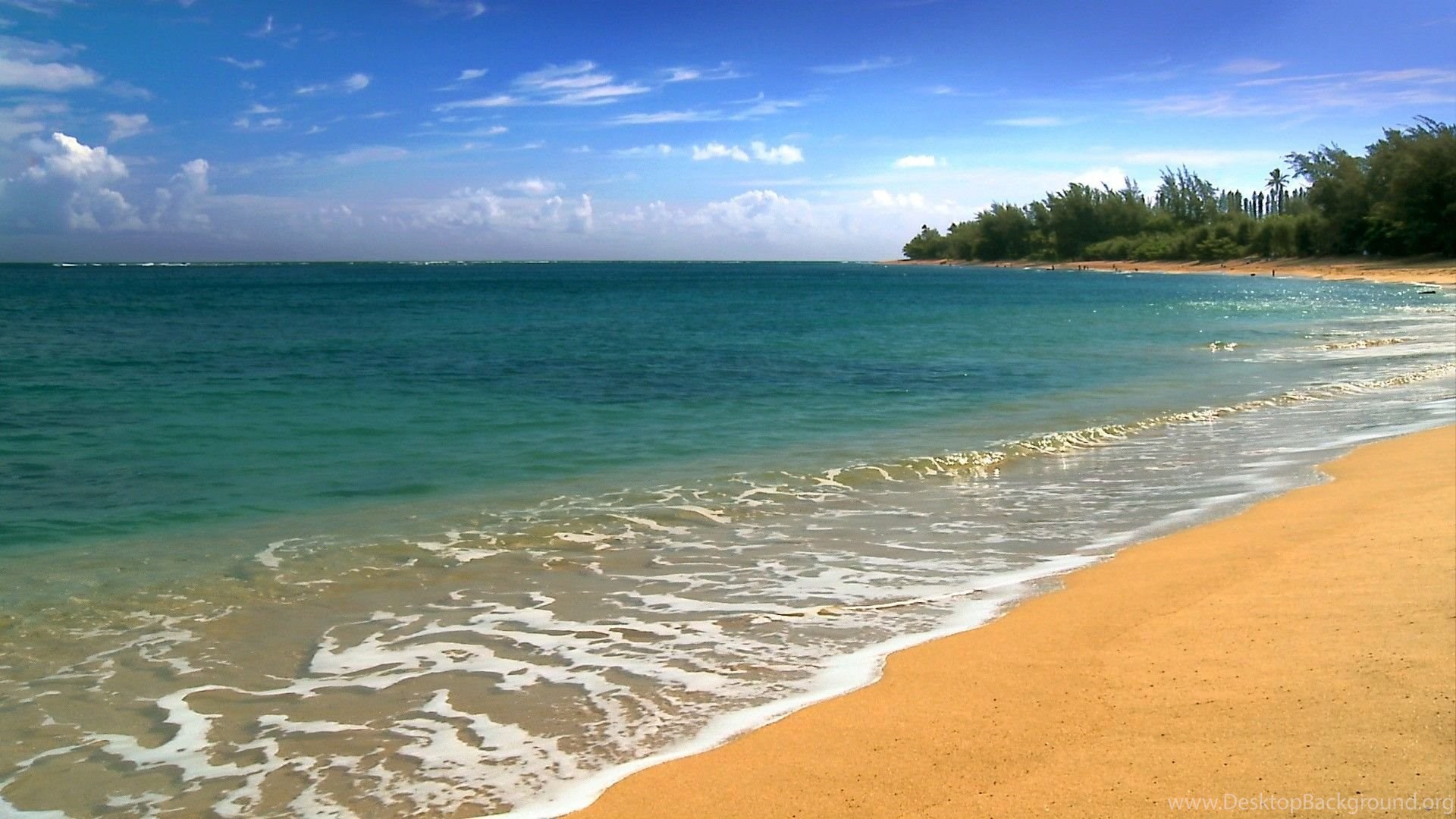 Hawaii beach scene 1920x1080 hd wallpapers and free stock photo popular voltagebd Image collections