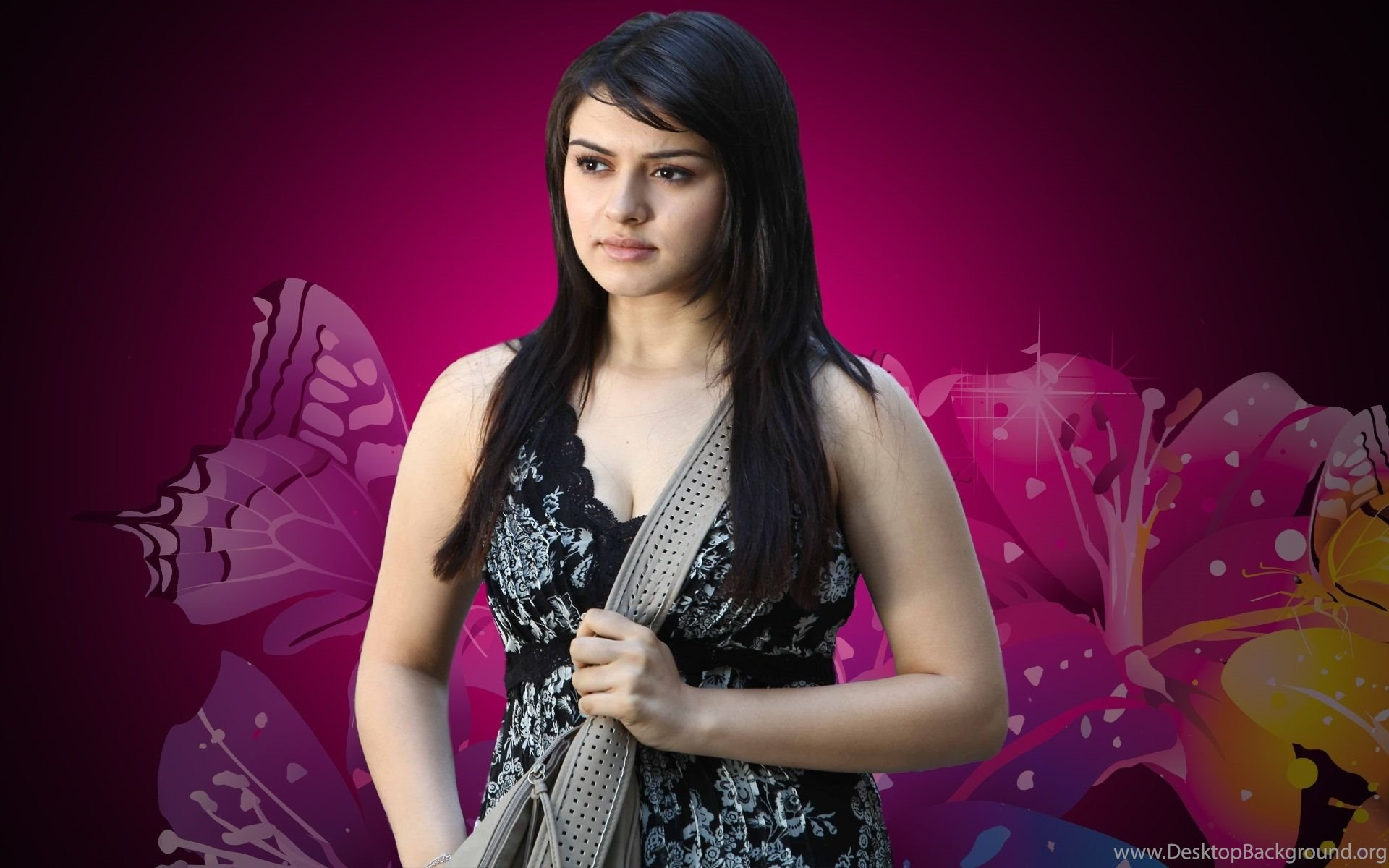 hansika motwani hot new hd wallpapers desktop background