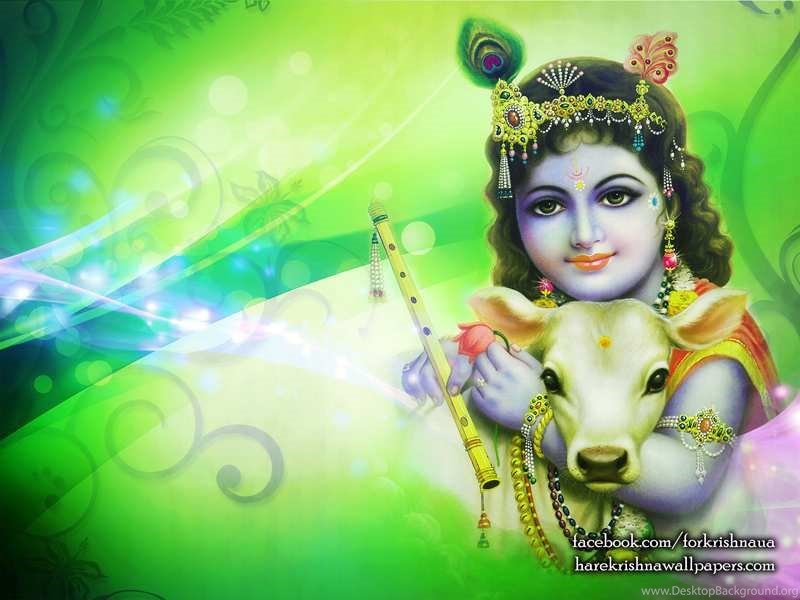 Krishna Wallpaper Lord Krishna And Cow Lord Krishna With Cow