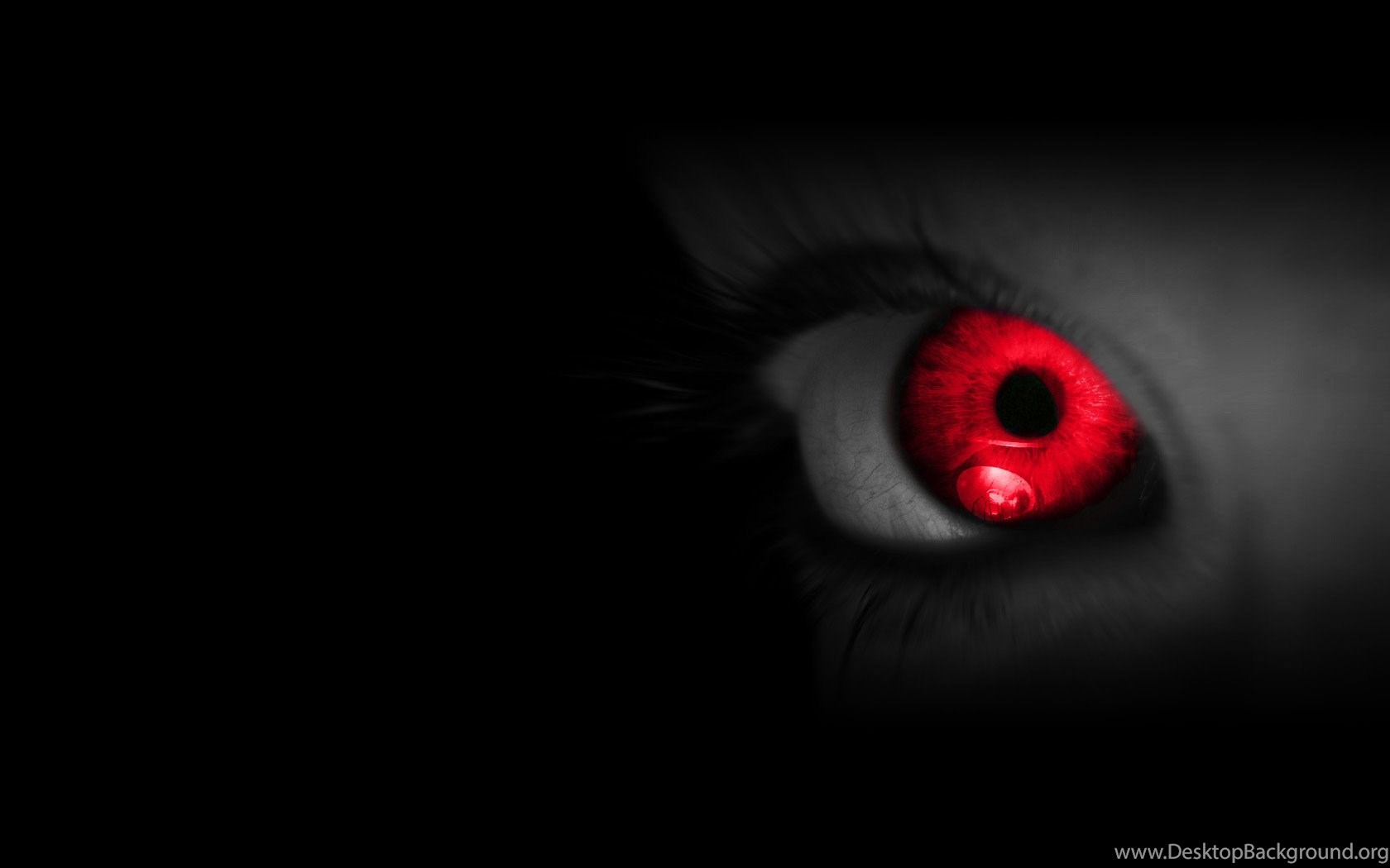 Red Eyes Latest HD Wallpapers Free ...