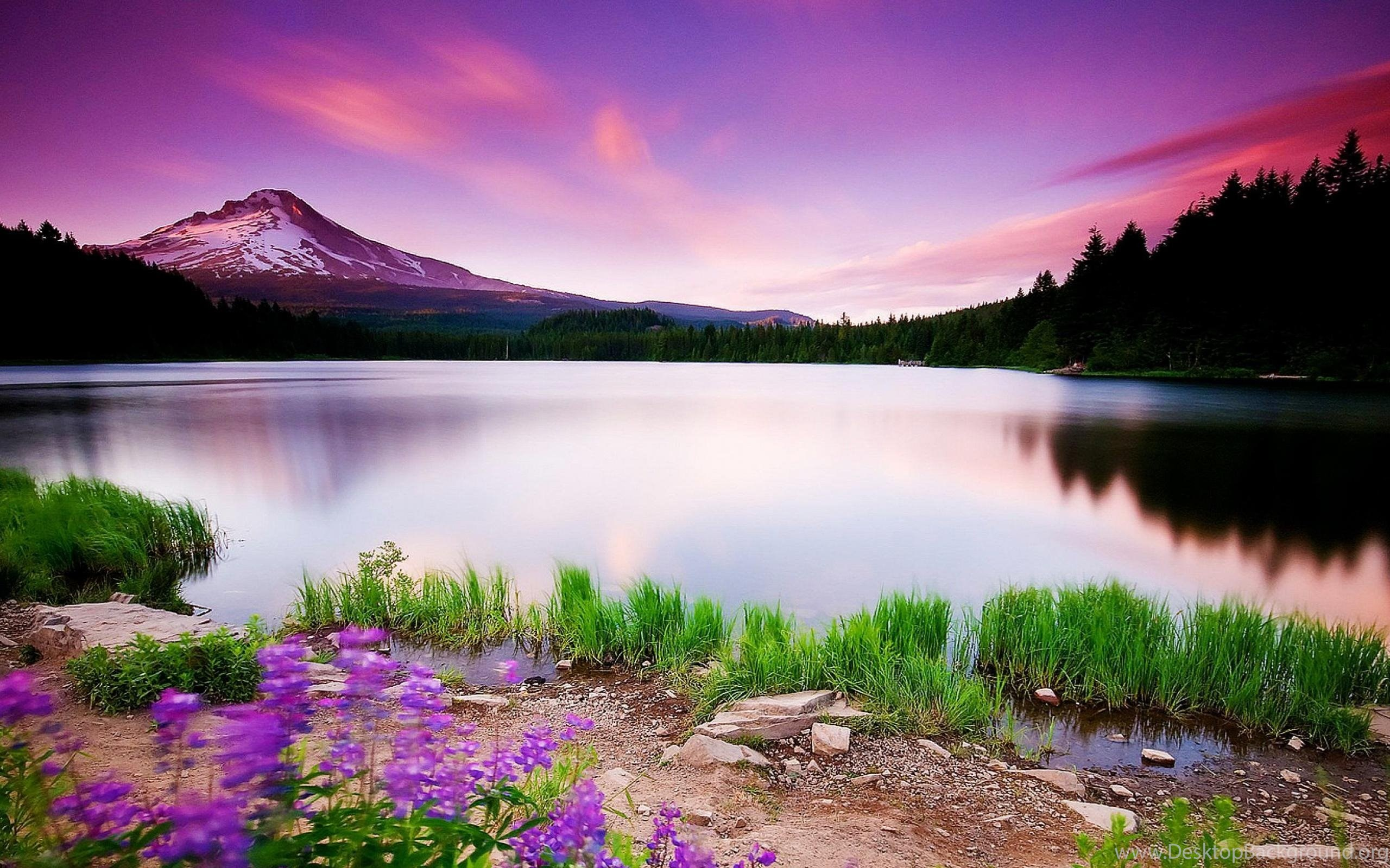 Pictures Of Nature Scenery Wallpapers Mobile Kemecer Com Desktop