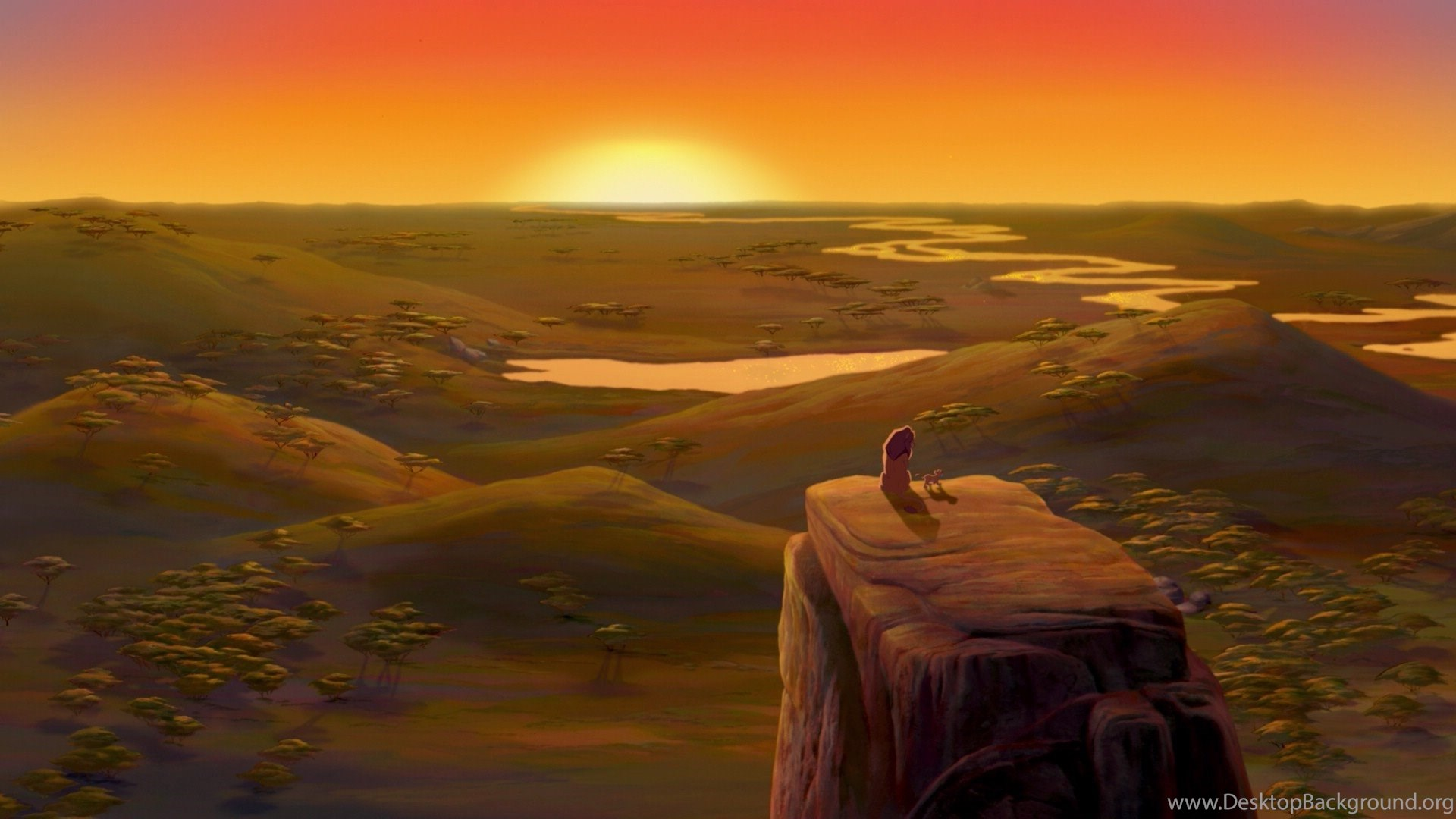 Sun Disney Company Simba The Lion King Lions Mufasa
