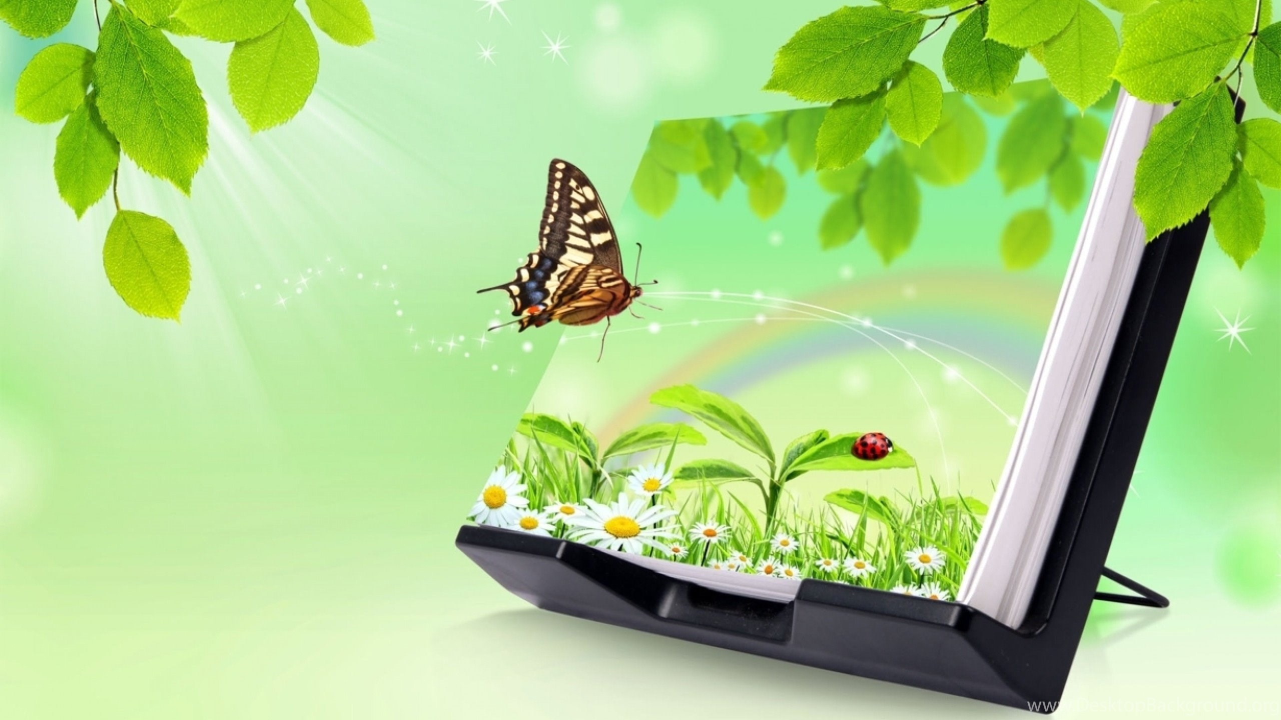 Butterfly Nature 3d Hd Wallpapers Jpg 289020 Desktop Background