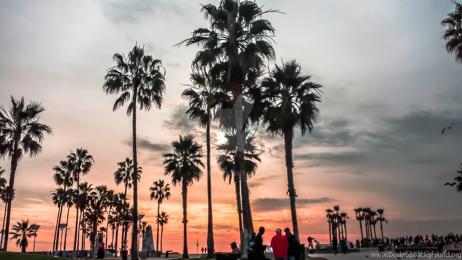 Golden State Of Mind Venice Beach Ca By Habiss On Deviantart Desktop Background