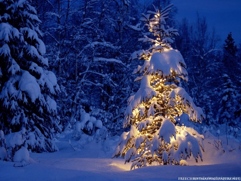 Christmas Snow Computer Wallpapers 192 Hd Wallpapers Site Desktop Background