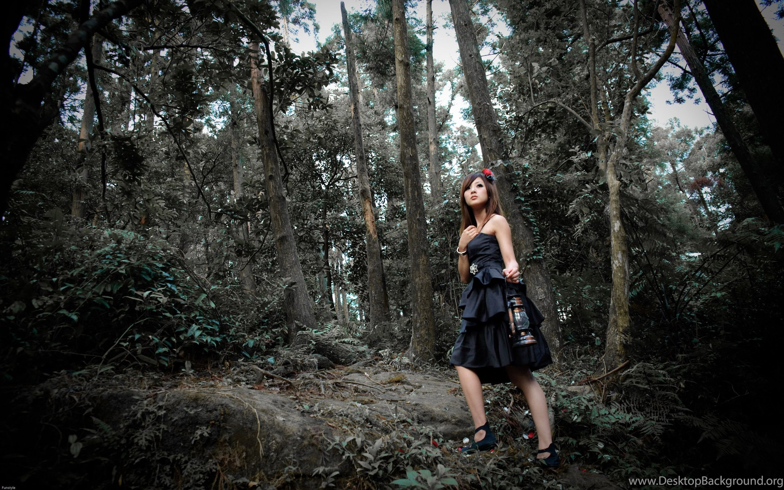 Forest Fashion Photography, Resolution, High, Hanuman