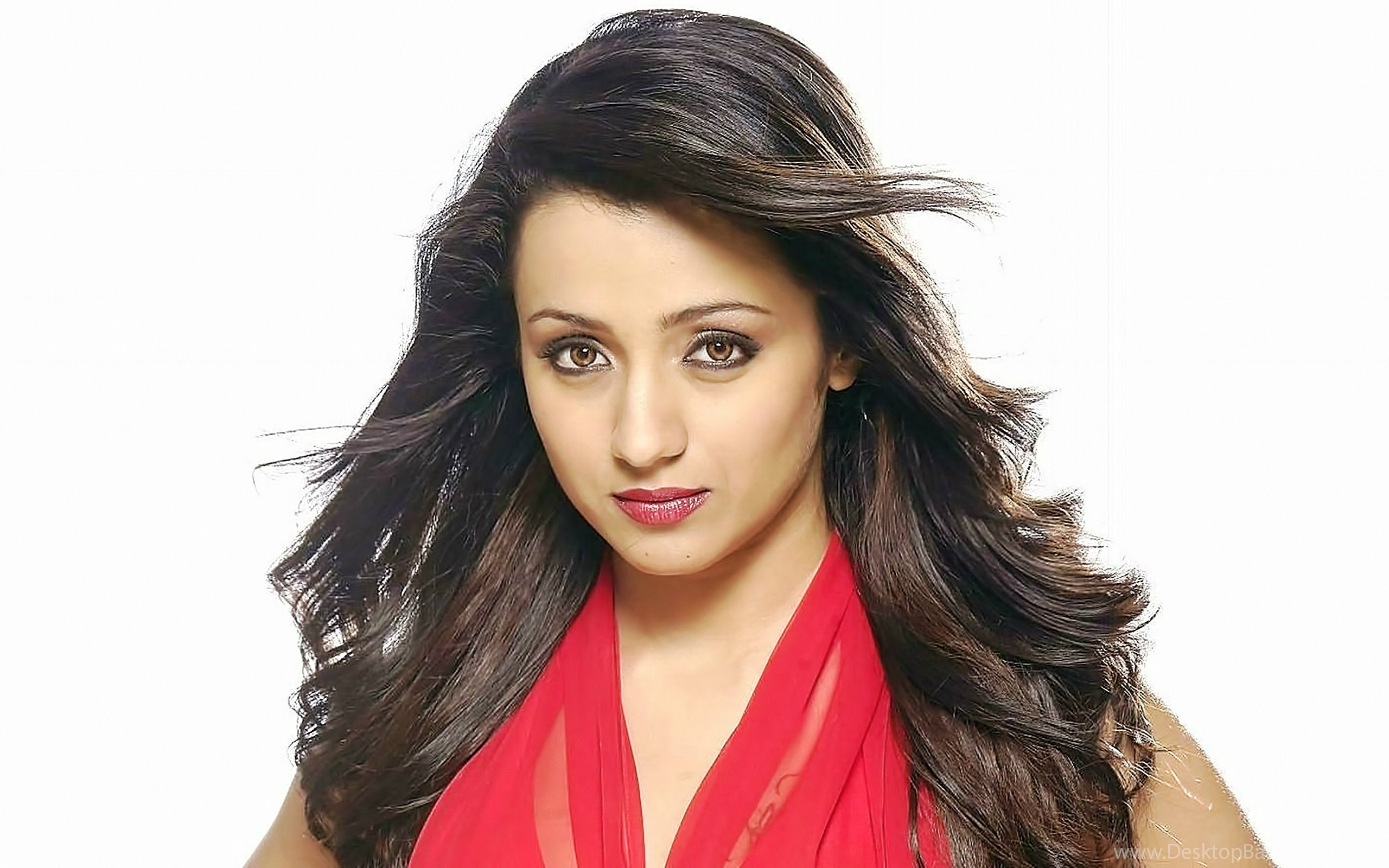 very beautiful trisha krishnan hd wallpapers desktop background