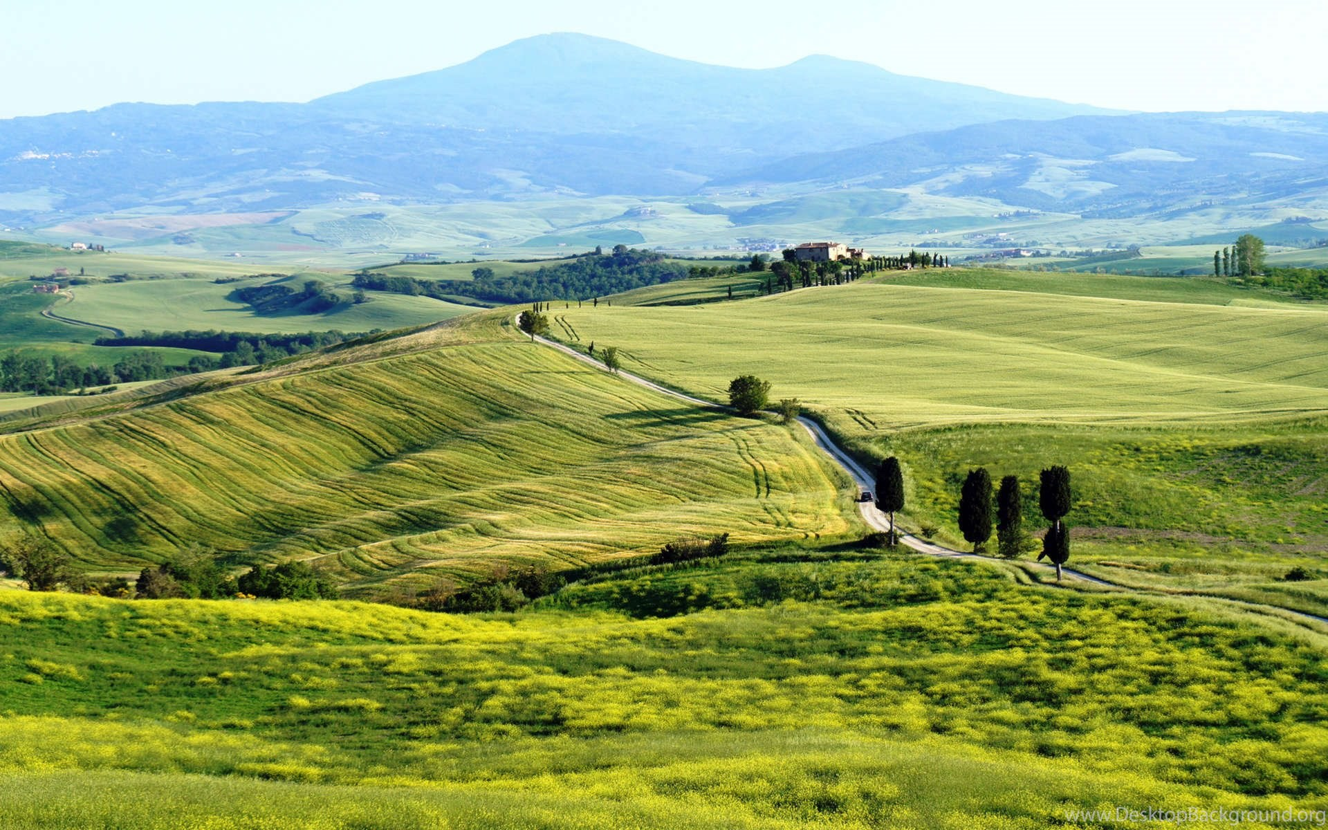 real nature real farm hd photo for desktop backgrounds widescreen