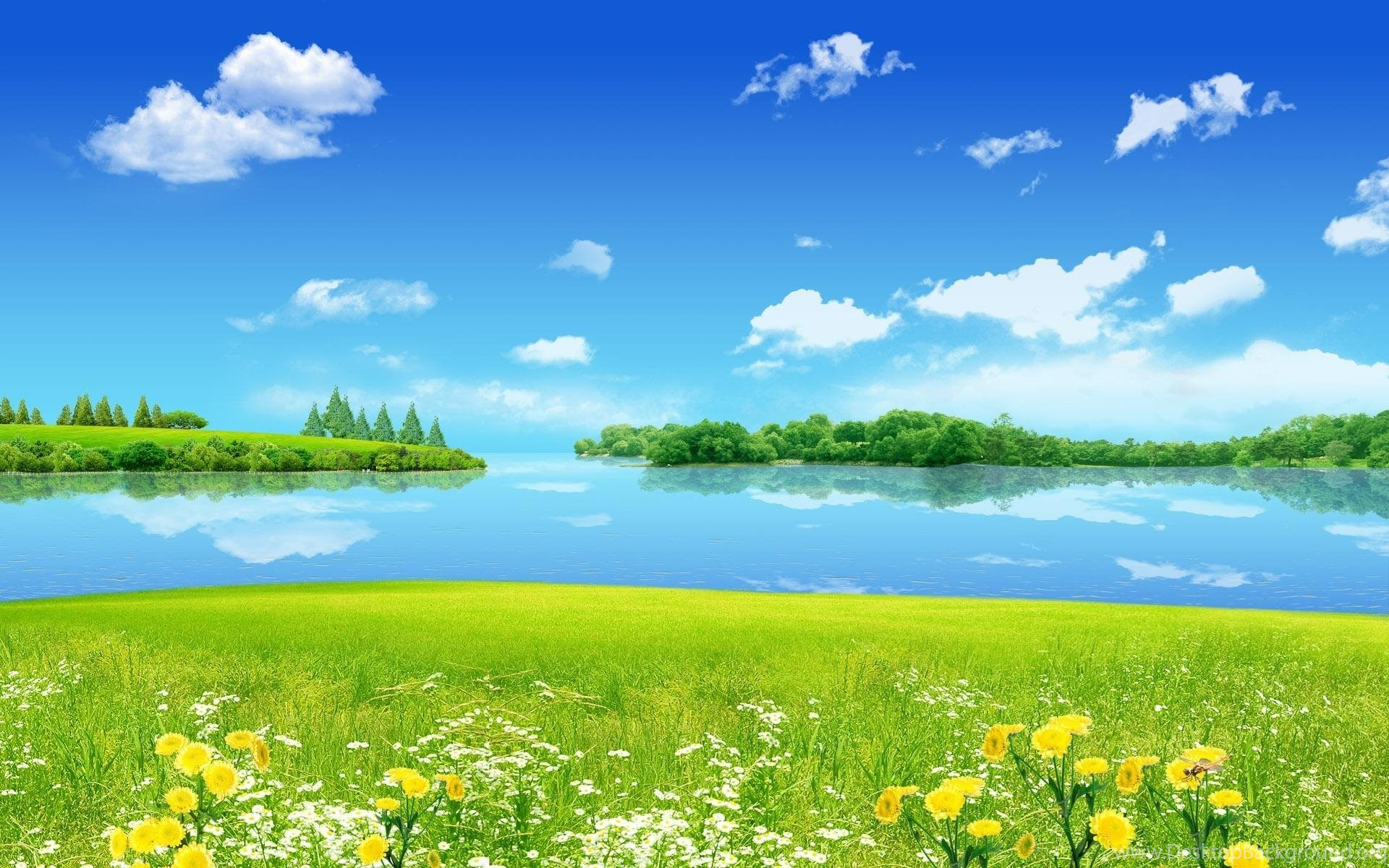 Summer Photography Backgrounds Hd Backgrounds 8 Hd Wallpapers Desktop Background