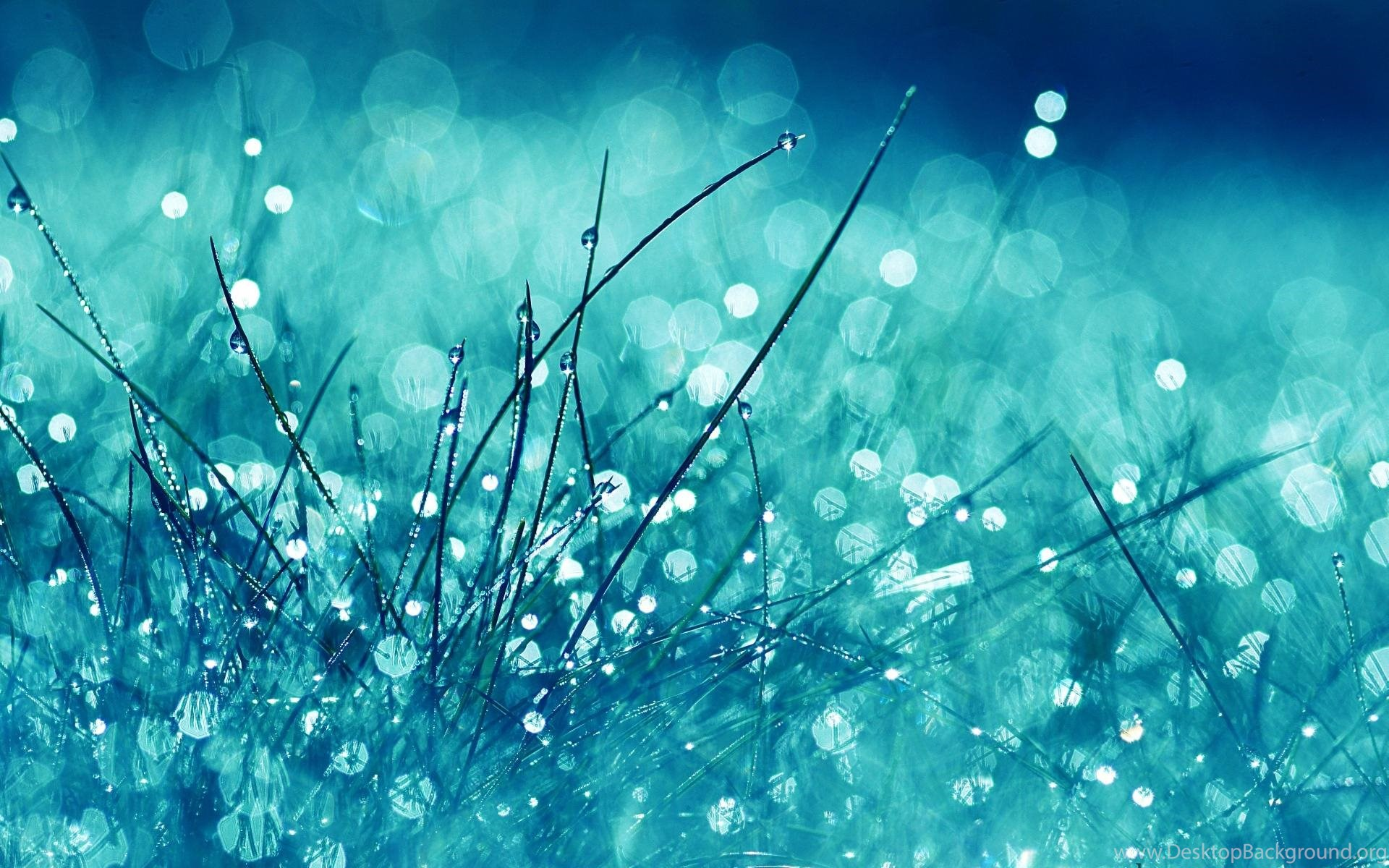 Rain Wallpapers Live Wallpapers For Pc Desktop Background