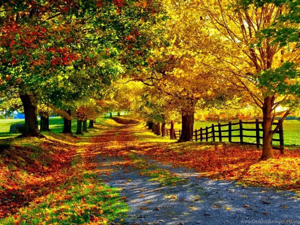 Fall Season Desktop Backgrounds Desktop Background
