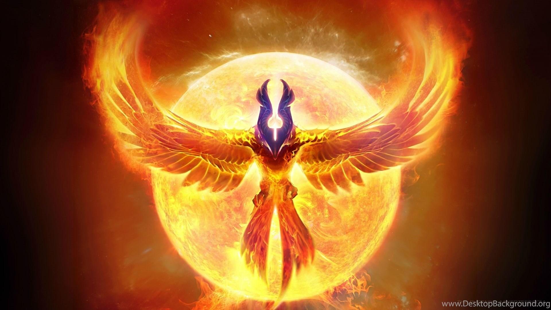 The phoenix hd wallpapers imgur desktop background - Fenix bird hd images ...