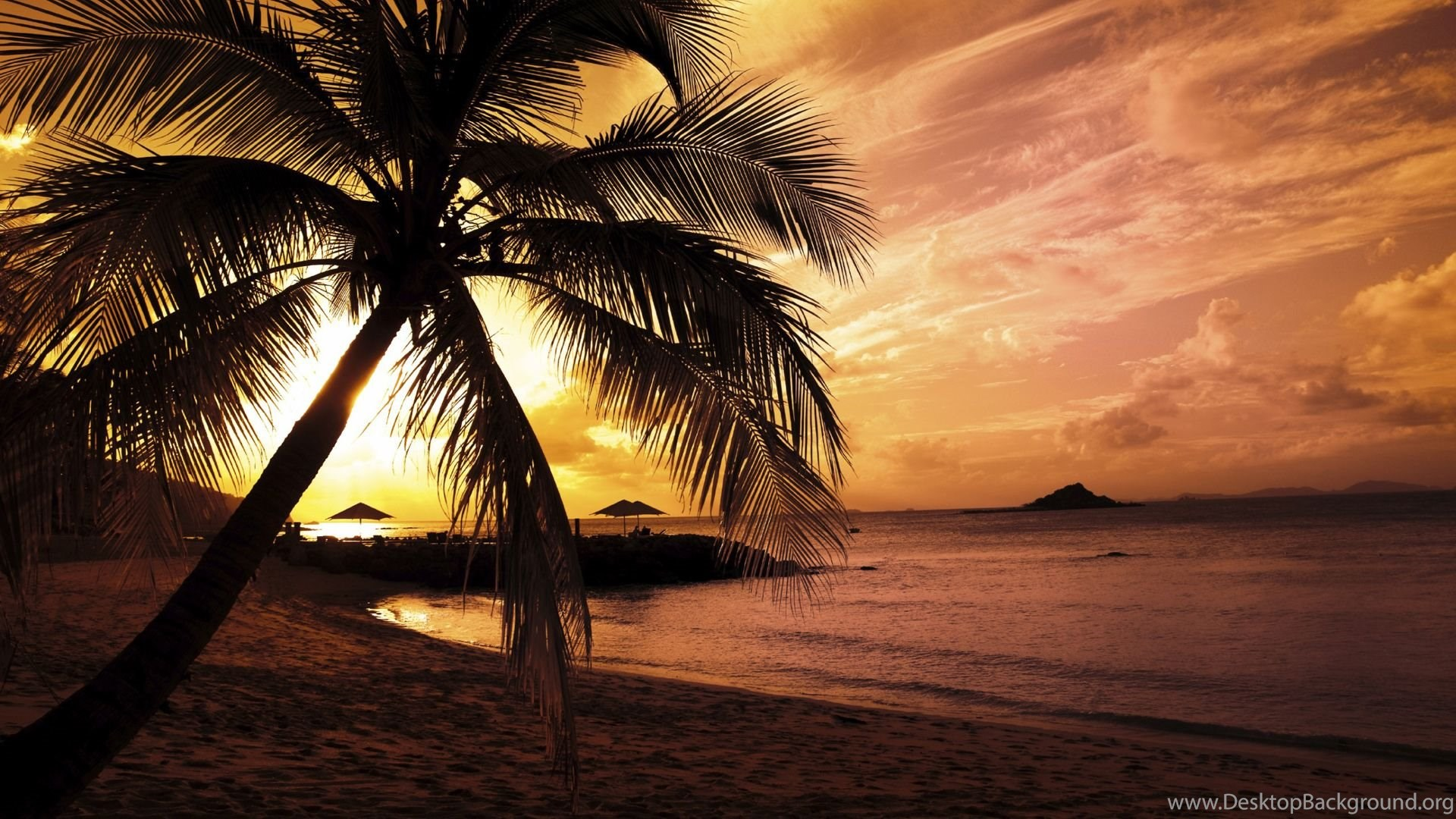 beach night wallpapers full hd ndemok desktop background