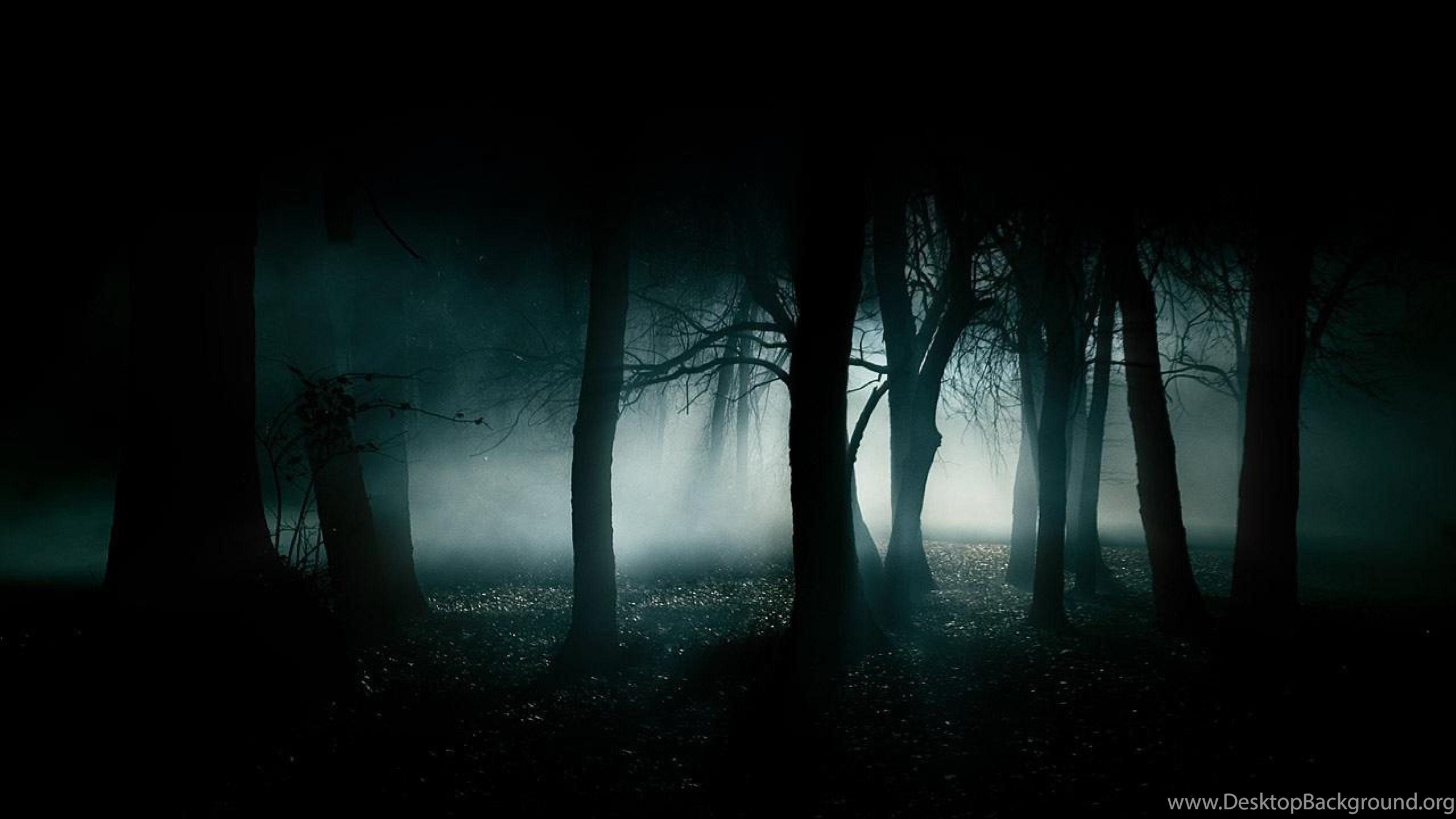 Creepy Forest Wallpapers HD Other Kokean Desktop