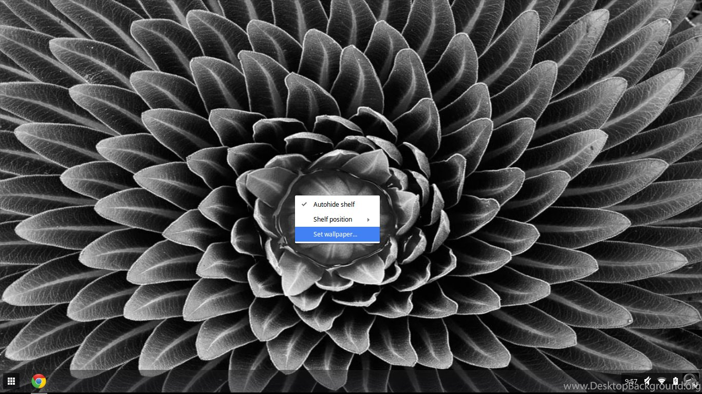 Chromebook Beginner S Guide How To Set A Custom Wallpapers On