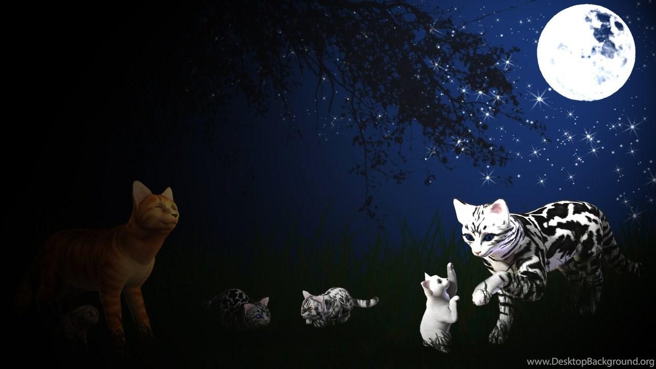 warrior cats wallpapers wallpapers zone desktop background