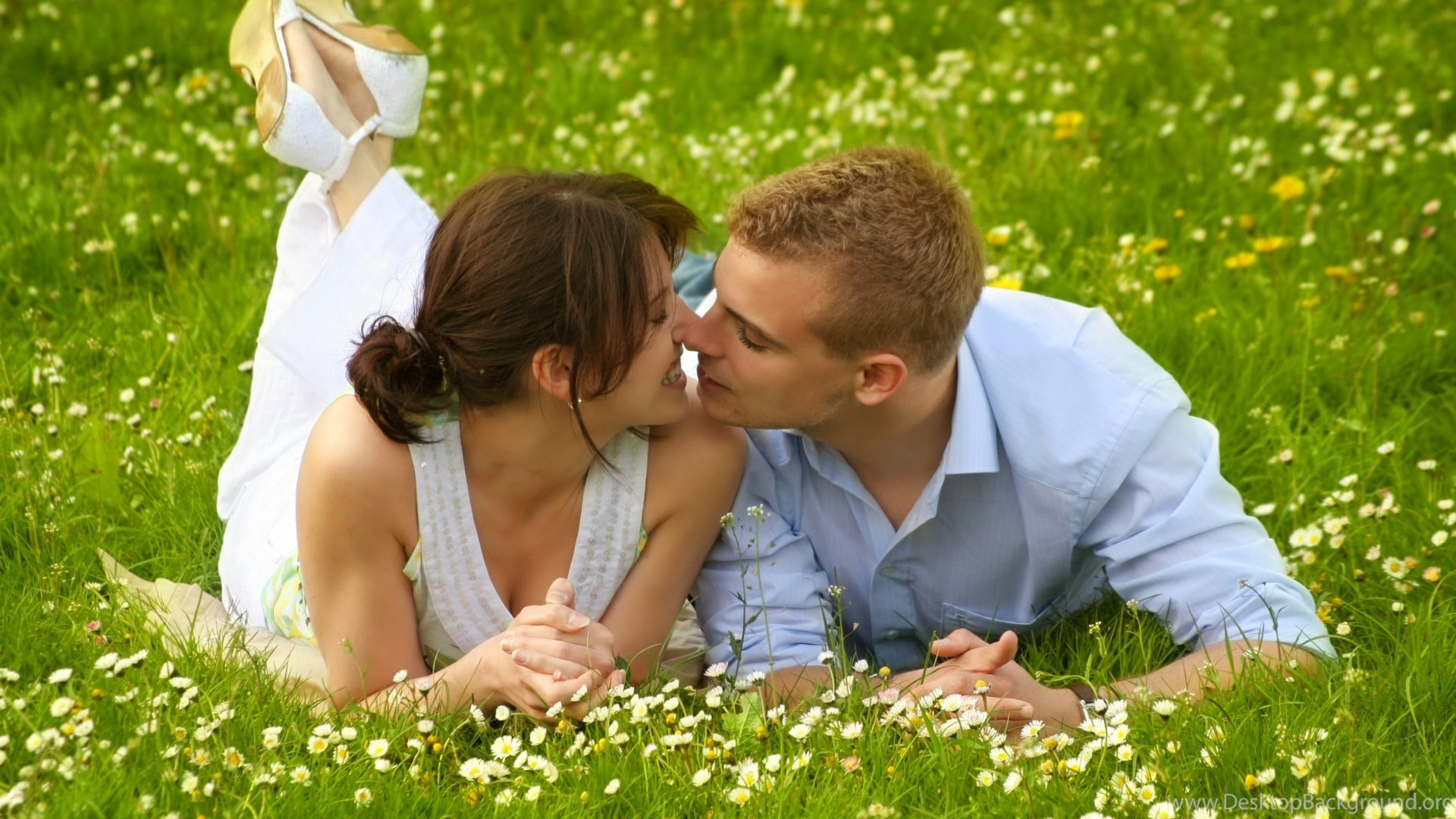 boy girl kiss on grass wallpapers download latest desktop
