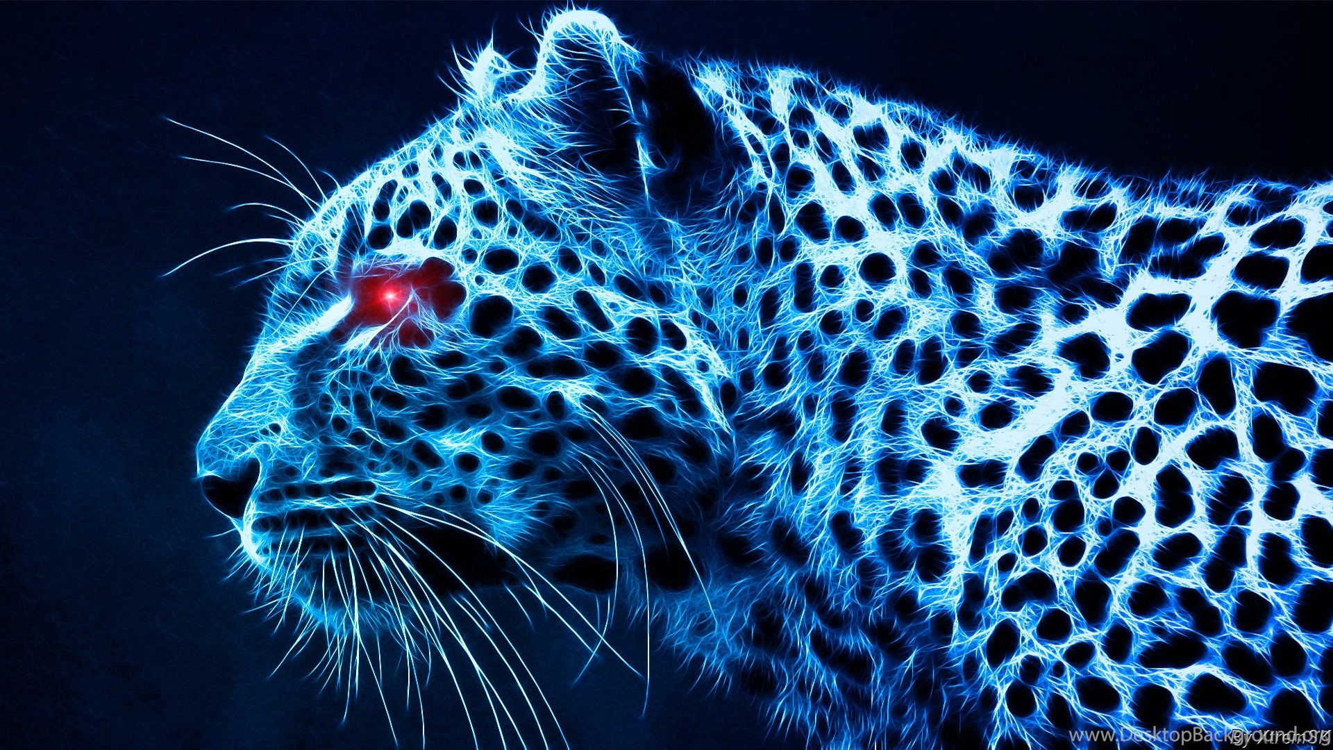 Glowing Cool Tiger Backgrounds Image Gallery Photonesta Desktop Background