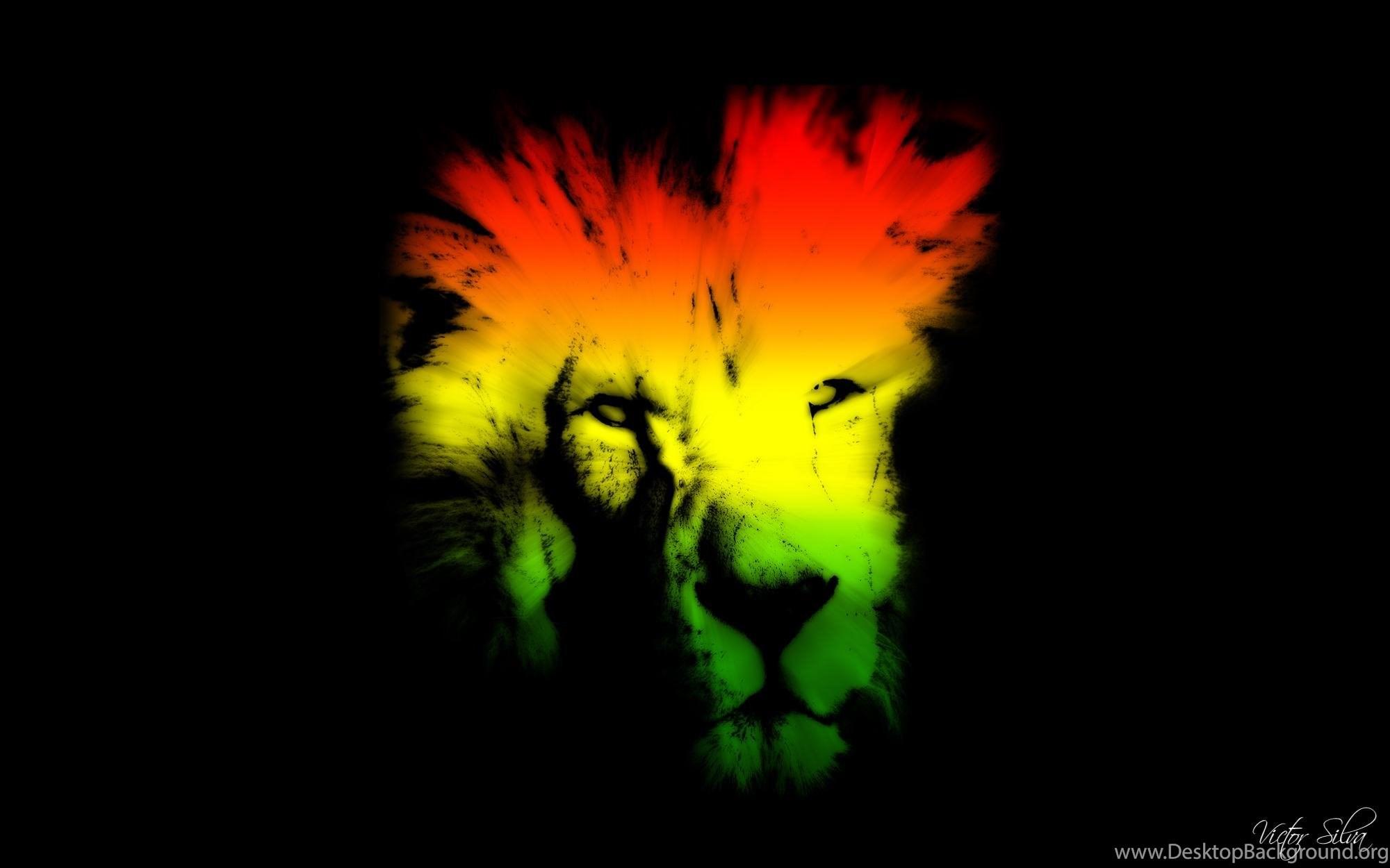 Colorful Lion Hd Wallpaper Get It Now Desktop Background