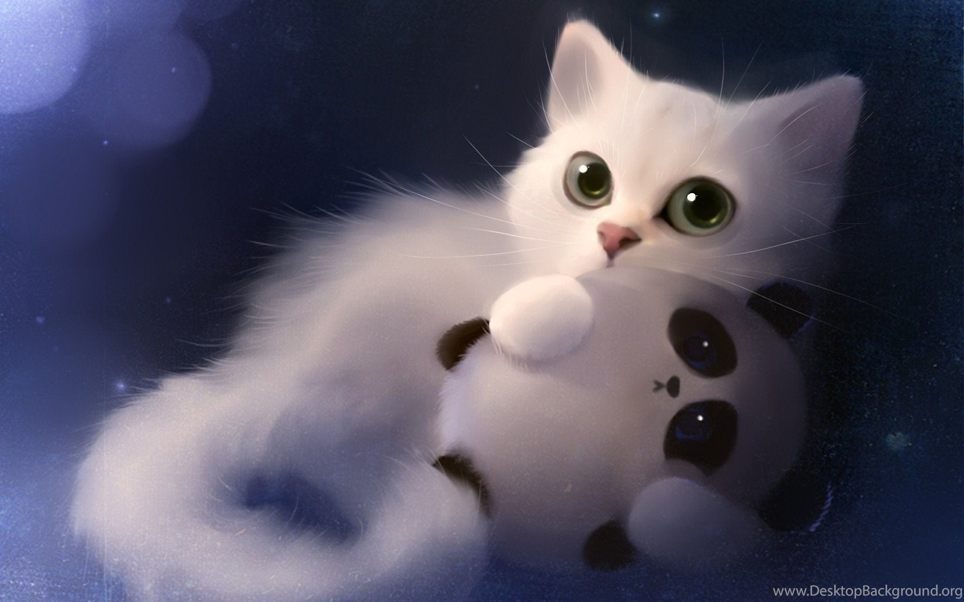 download free 100 cute and sweet cat wallpapers the quotes land