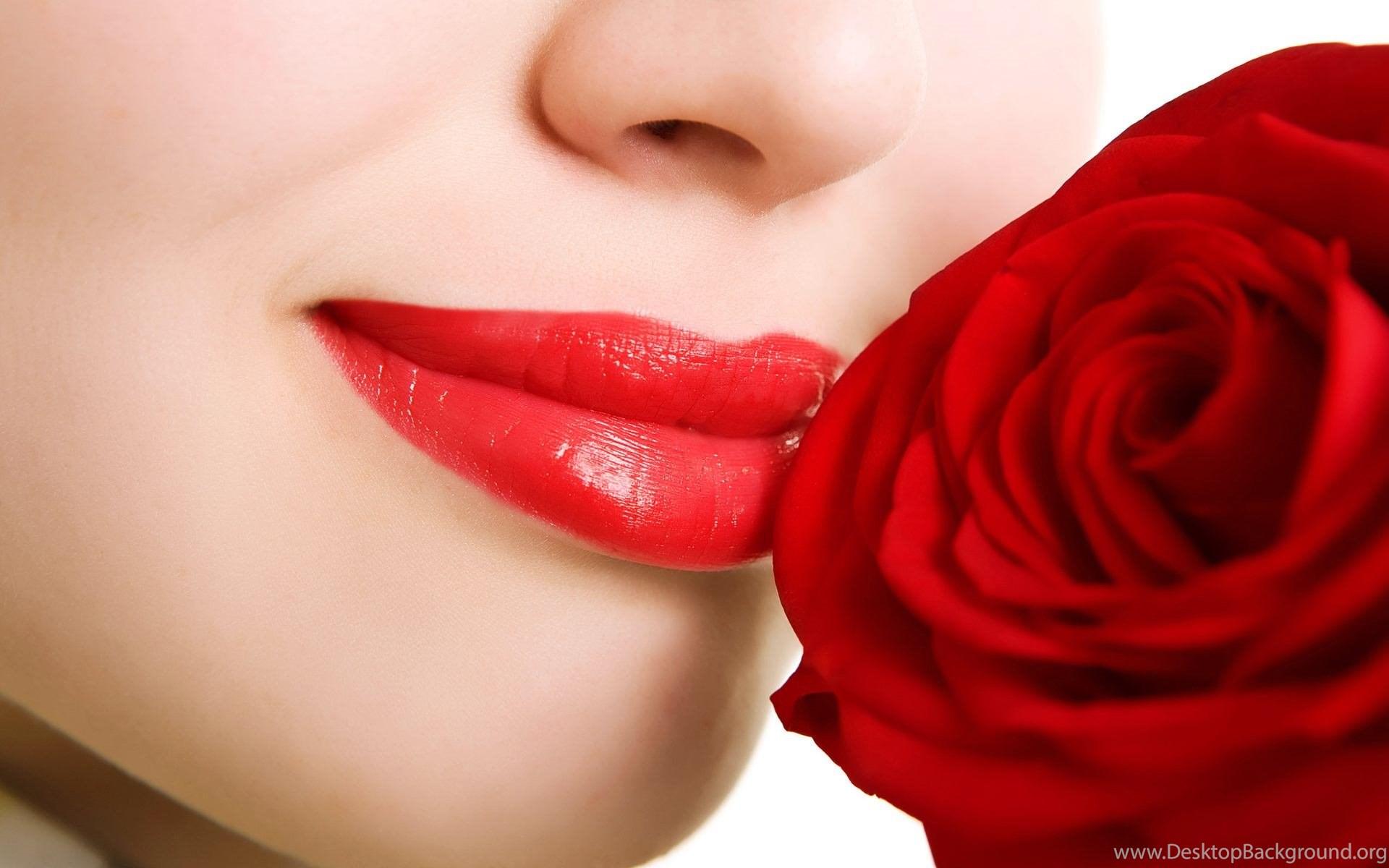 Beautiful red flower wallpapers mobile desktop background widescreen izmirmasajfo