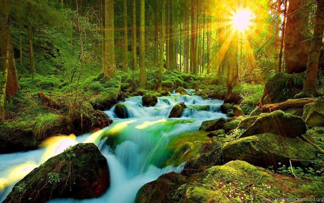 Most Beautiful Nature Wallpapers Wallpapers Zone Desktop